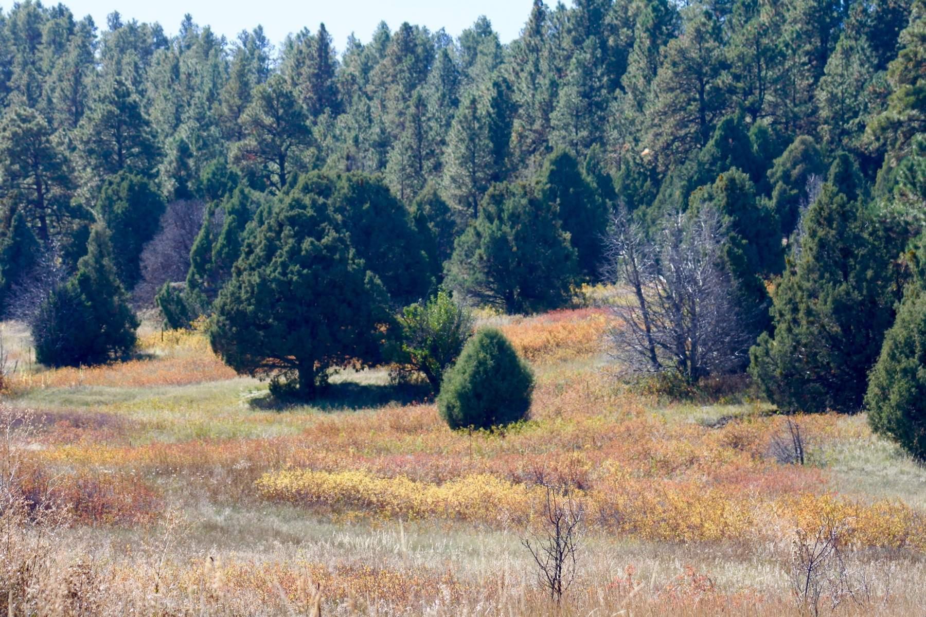 Terrain pour l Vente à Penasco, Nouveau-Mexique 87543 États-Unis