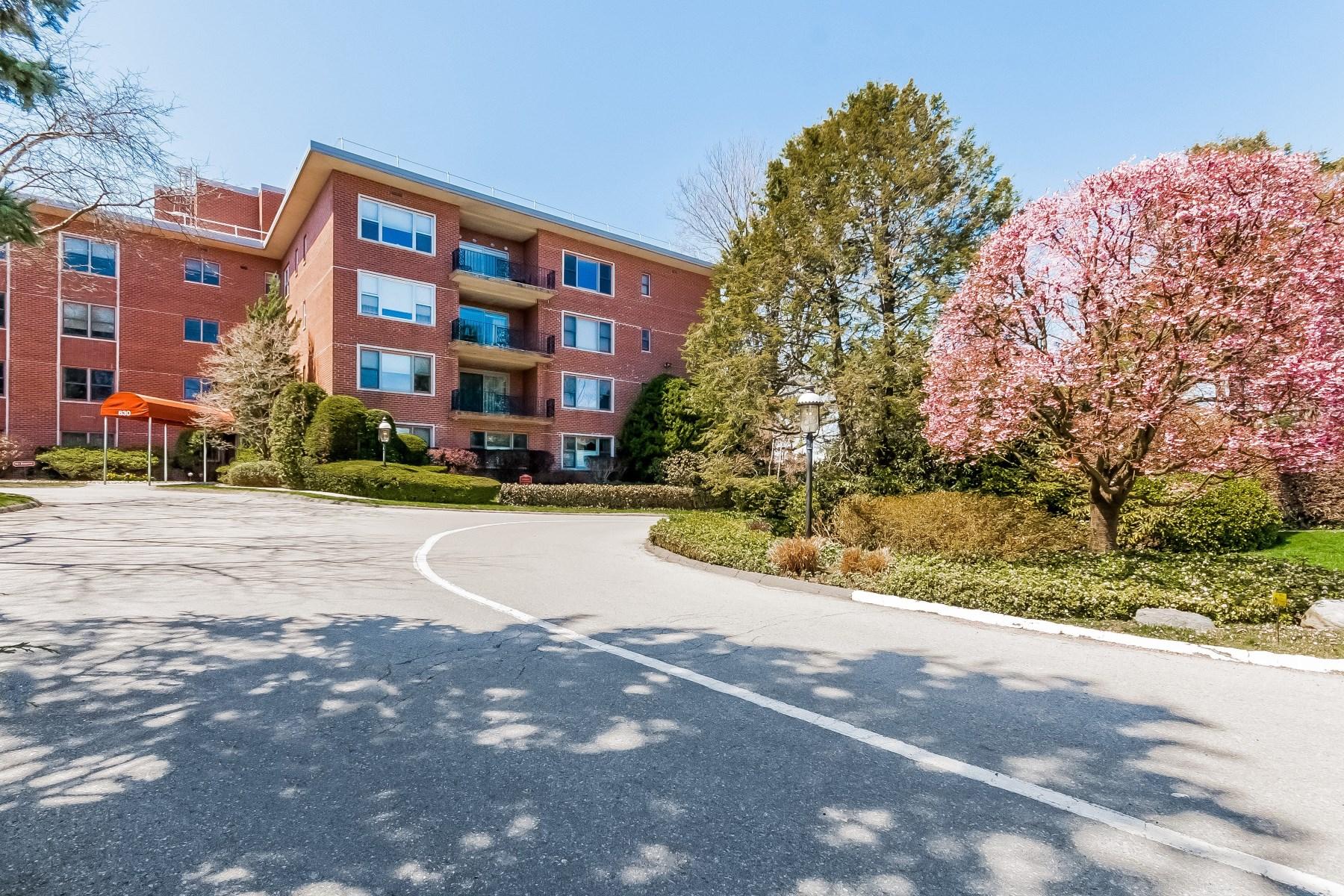 Société civile immobilière pour l Vente à Waterfront Co-Op Greenwich, Connecticut 06830 États-Unis