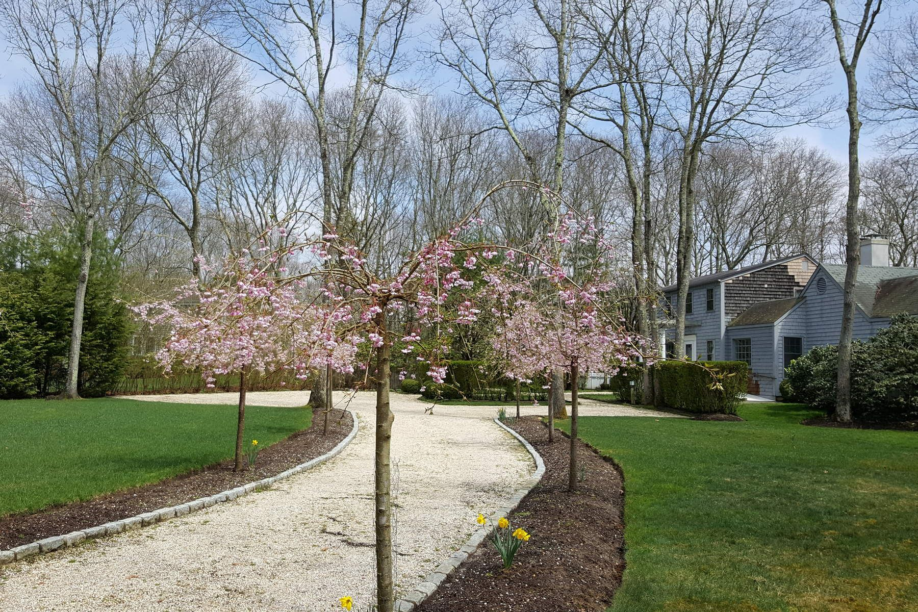 Single Family Home for Rent at Sagaponack Contemporary Sagaponack, New York 11962 United States
