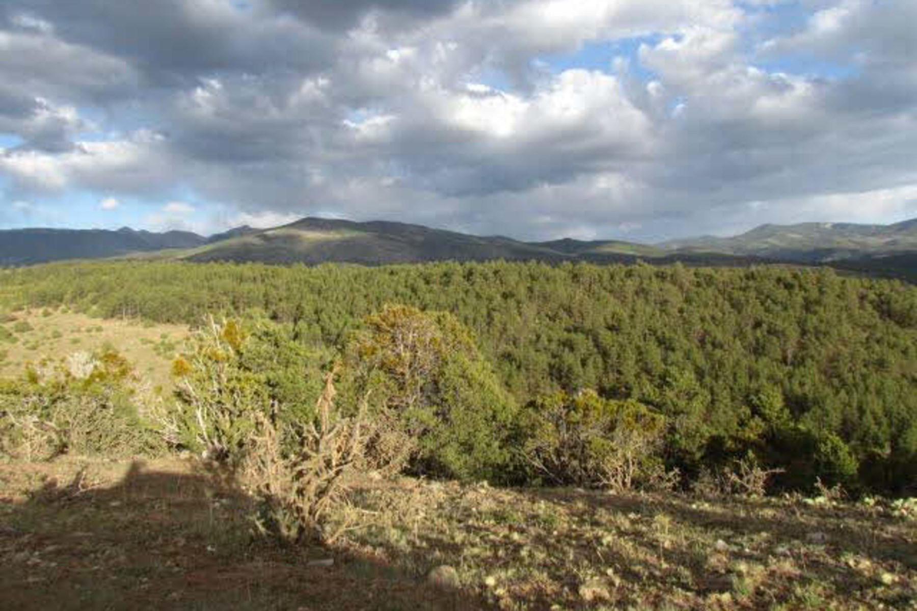 Additional photo for property listing at Tract E County Road 79 Tract E County Road 79 Truchas, New Mexico 87578 États-Unis