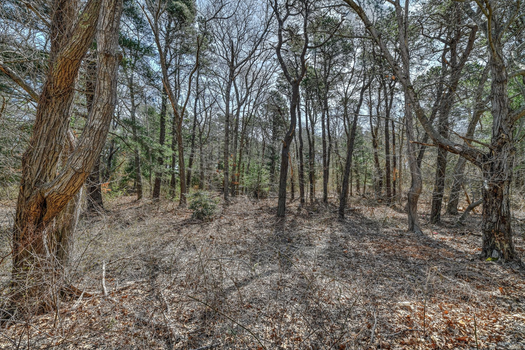 Land for Active at 36 Cranberry Trail East Sandwich, Massachusetts 02537 United States