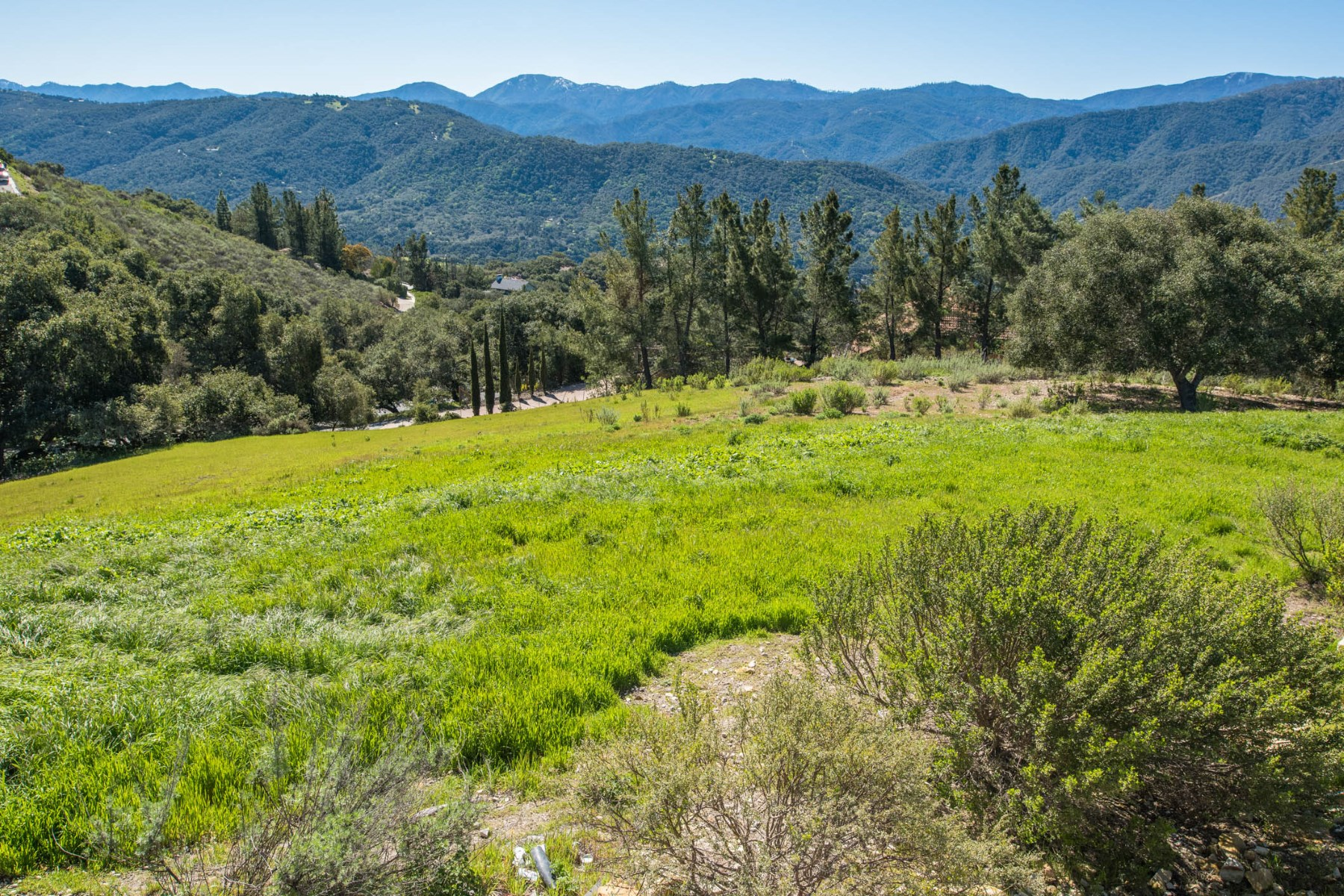 Vineyard for Sale at Desirable Los Tulares Vista Parcel 31452 Via Las Rosas Carmel Valley, California 93924 United States