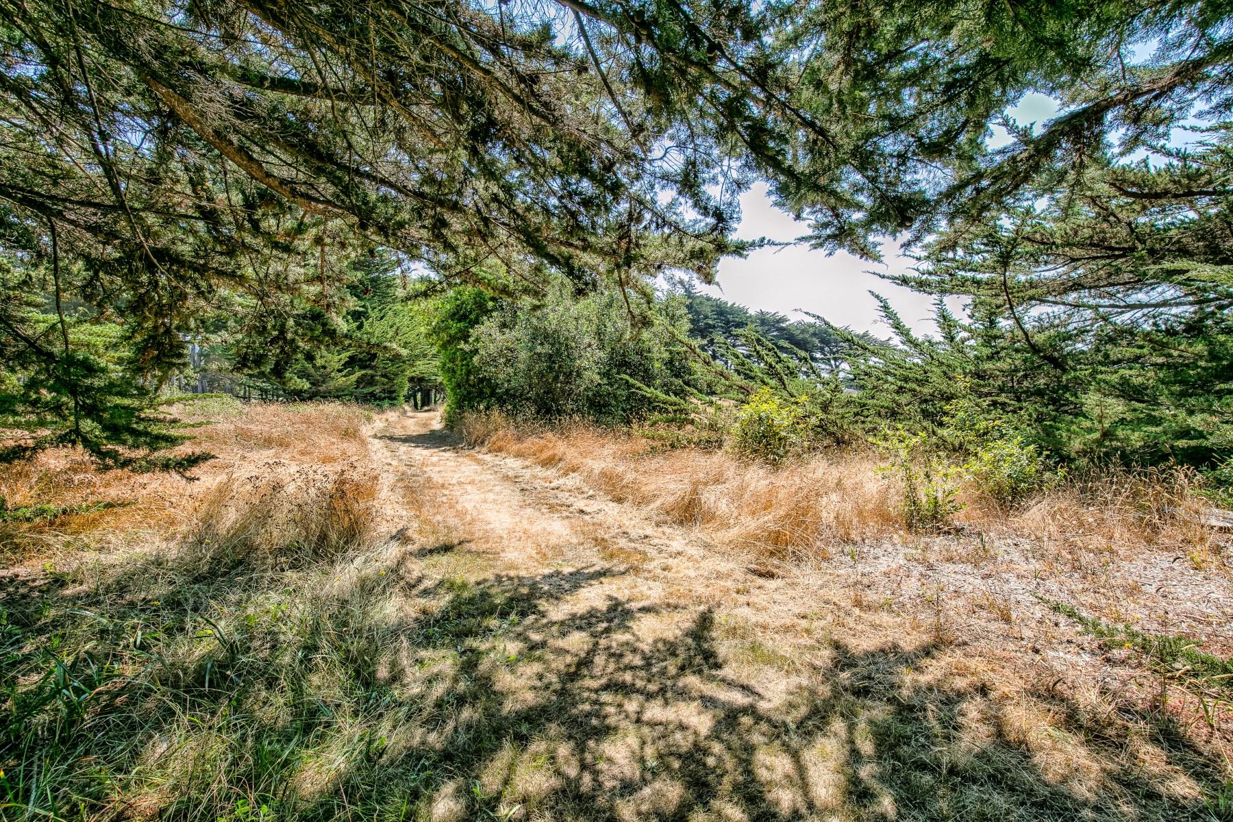 土地 为 销售 在 Spacious Building Site 36786 Mariners Dr, The Sea Ranch, 加利福尼亚州, 95497 美国