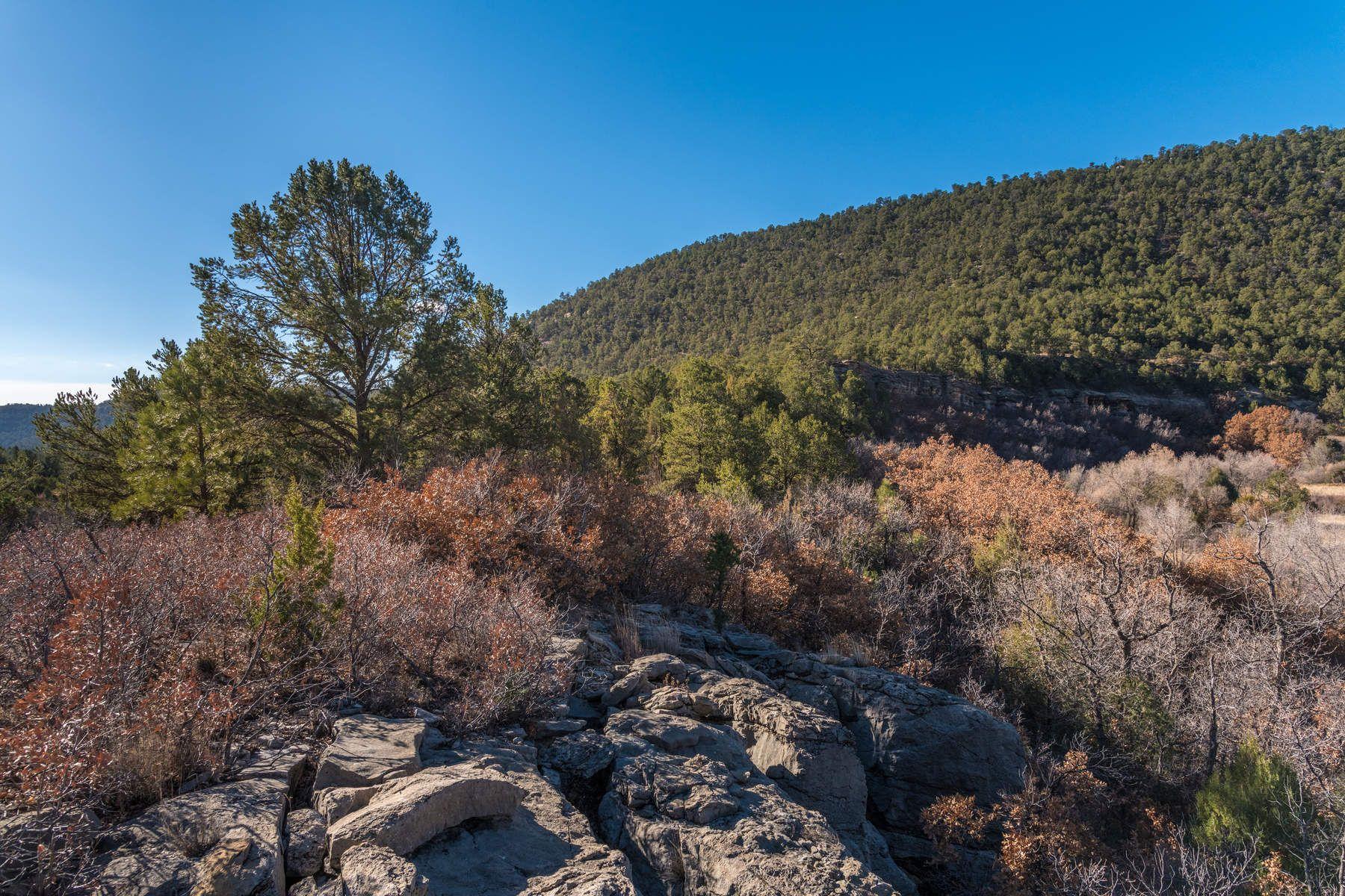 土地,用地 为 销售 在 CRB 44A Lower Colonias Cow Creek 佩科斯, 新墨西哥州, 87552 美国