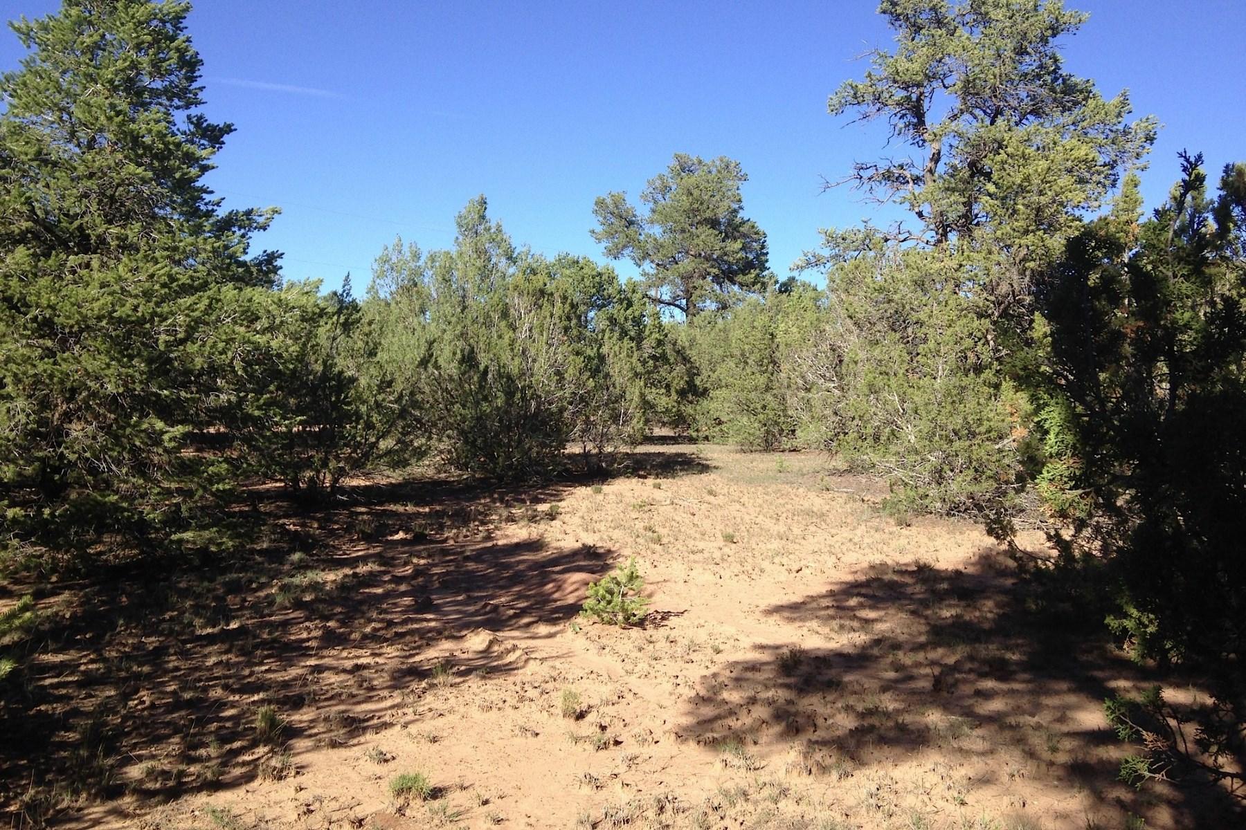 Land for Sale at 0 Apache Ridge Road 0 Apache Ridge Road Santa Fe, New Mexico 87508 United States