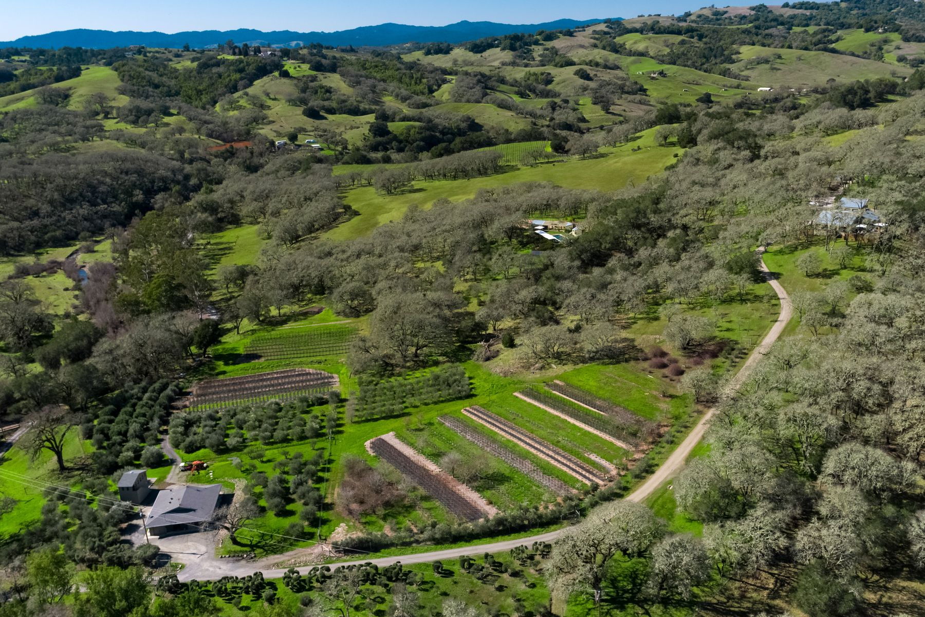 Single Family Homes for Sale at An Artful Sanctuary 11720 Chalk Hill Rd Healdsburg, California 95448 United States