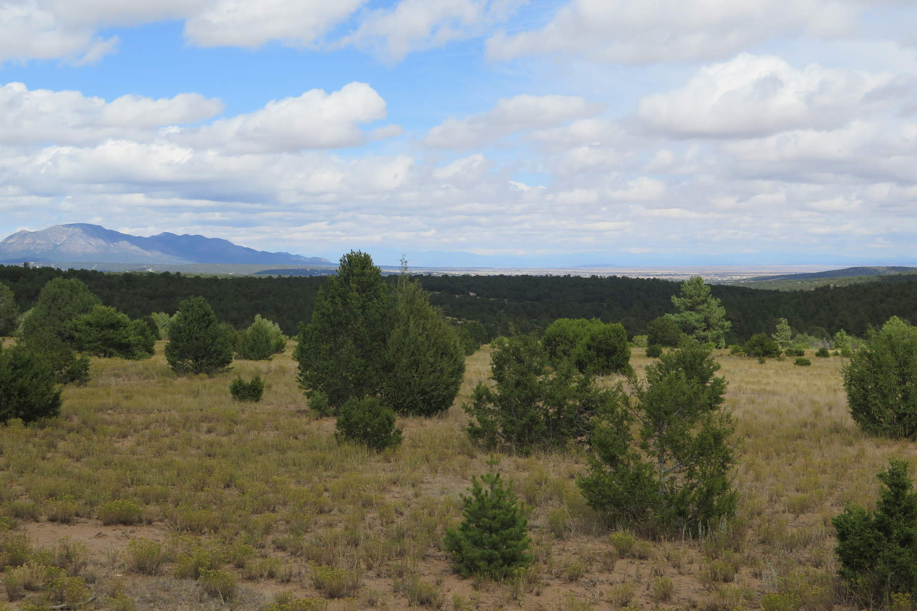Land for Sale at 565 Juan Tomas Road Tijeras, New Mexico, 87059 United States