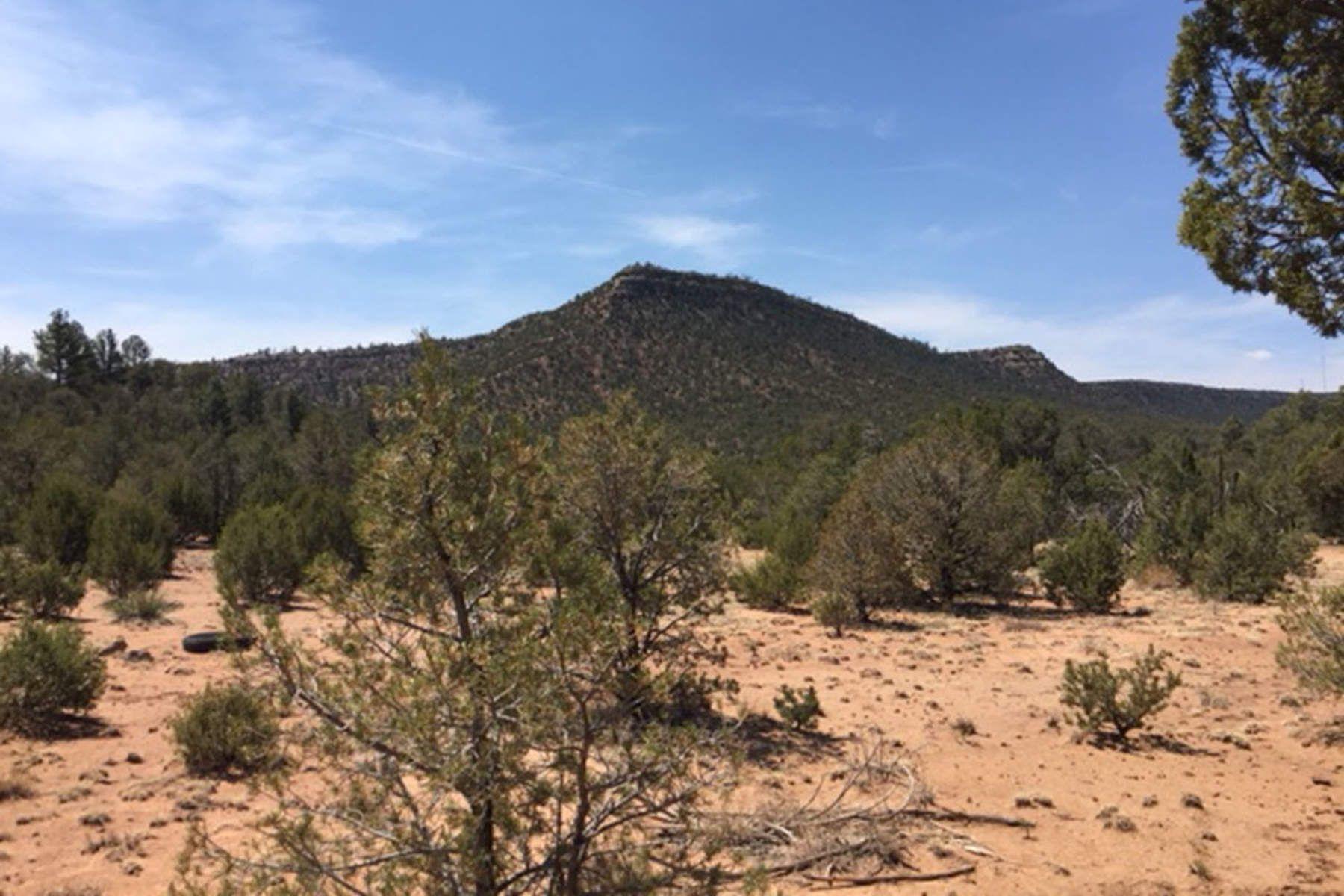 Terreno per Vendita alle ore Bernal, Nuovo Messico 87569 Stati Uniti