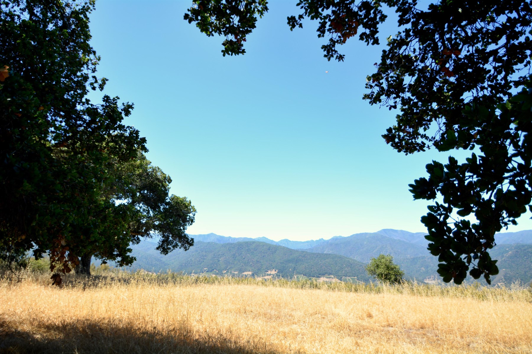 Property For Sale Carmel Valley