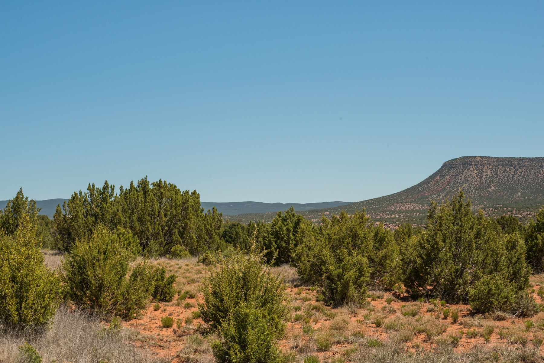 Land for Sale at Camiino De La Vineteria Camino De La Vineteria (52 Acres) El Pueblo, New Mexico 87560 United States