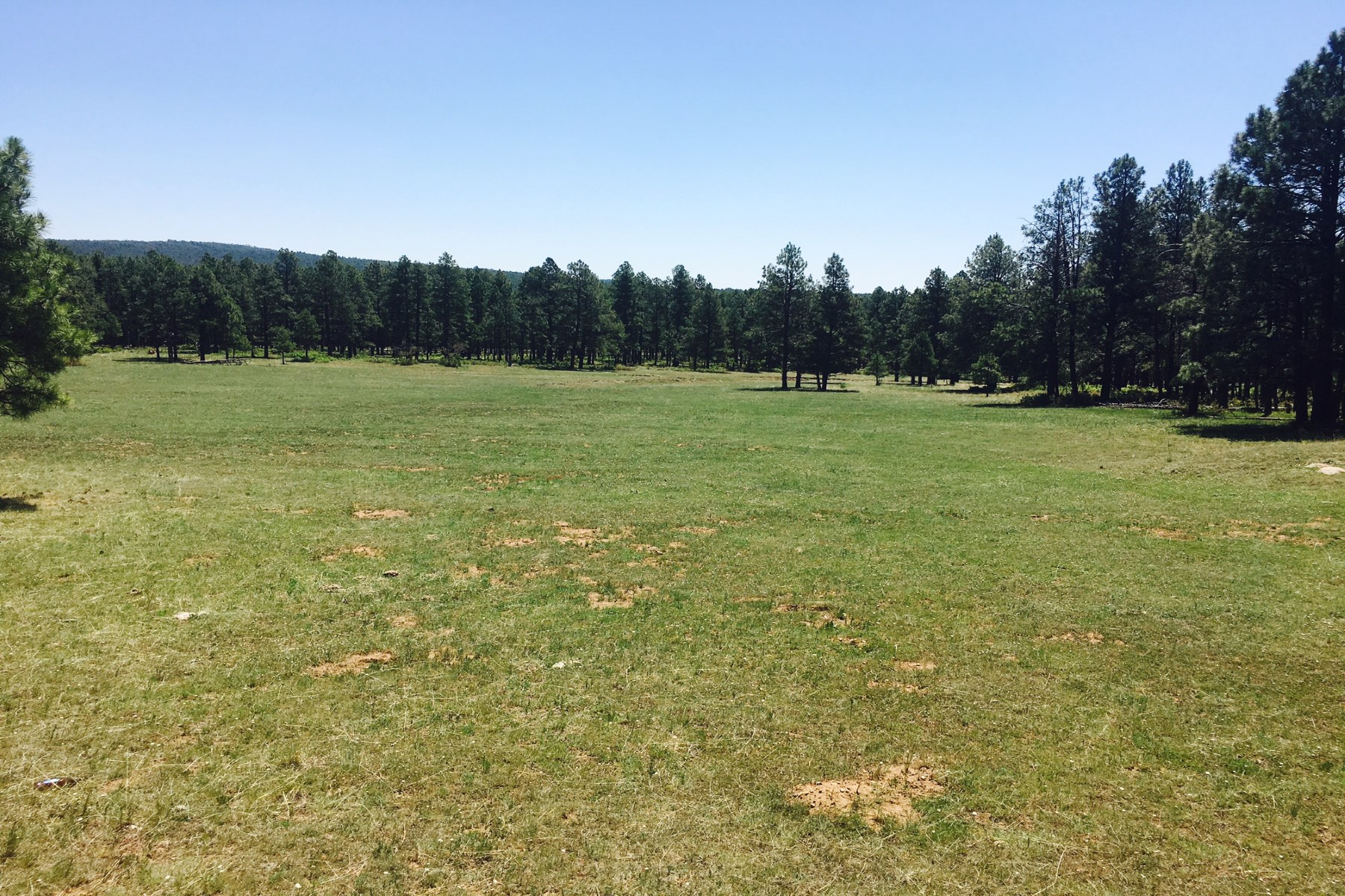 Land for Sale at Mineral Hill Ranch Las Vegas, New Mexico, 87701 United States