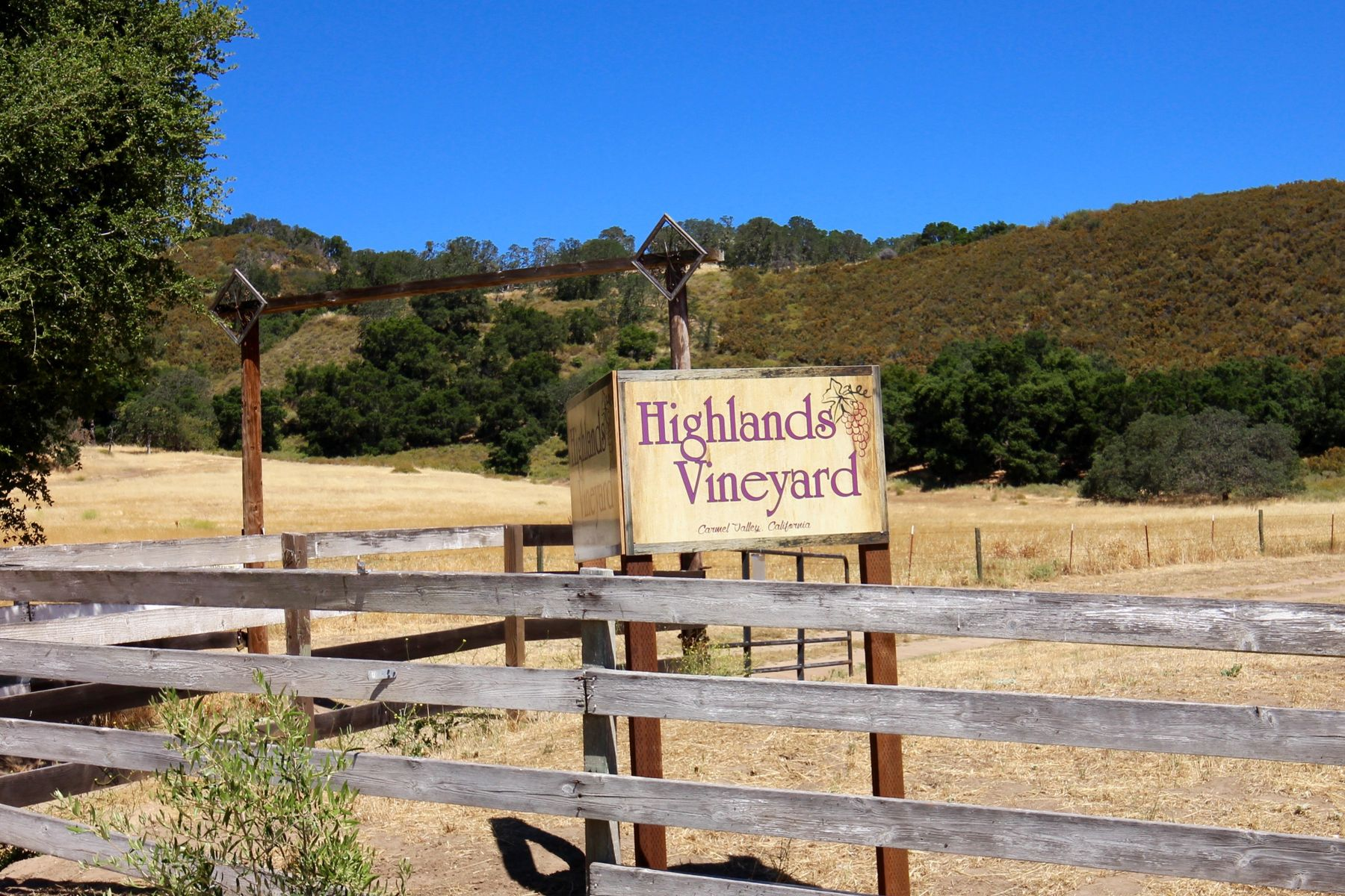 Vineyard Real Estate for Sale at CARMEL VALLEY HIGHLANDS VINEYARD 39995 Carmel Valley Road Greenfield, California 93927 United States