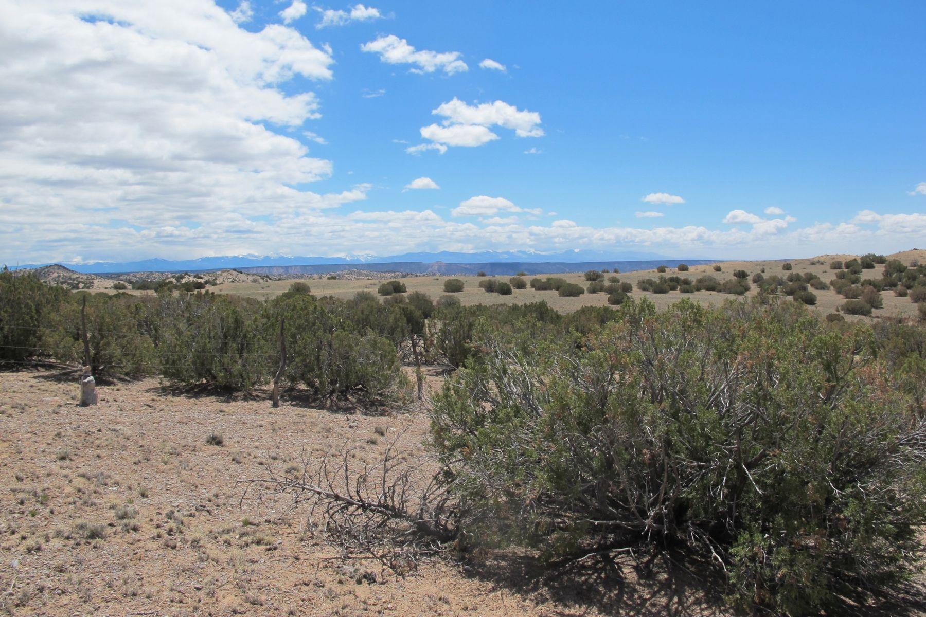 Terreno per Vendita alle ore Medanales, Nuovo Messico 87548 Stati Uniti