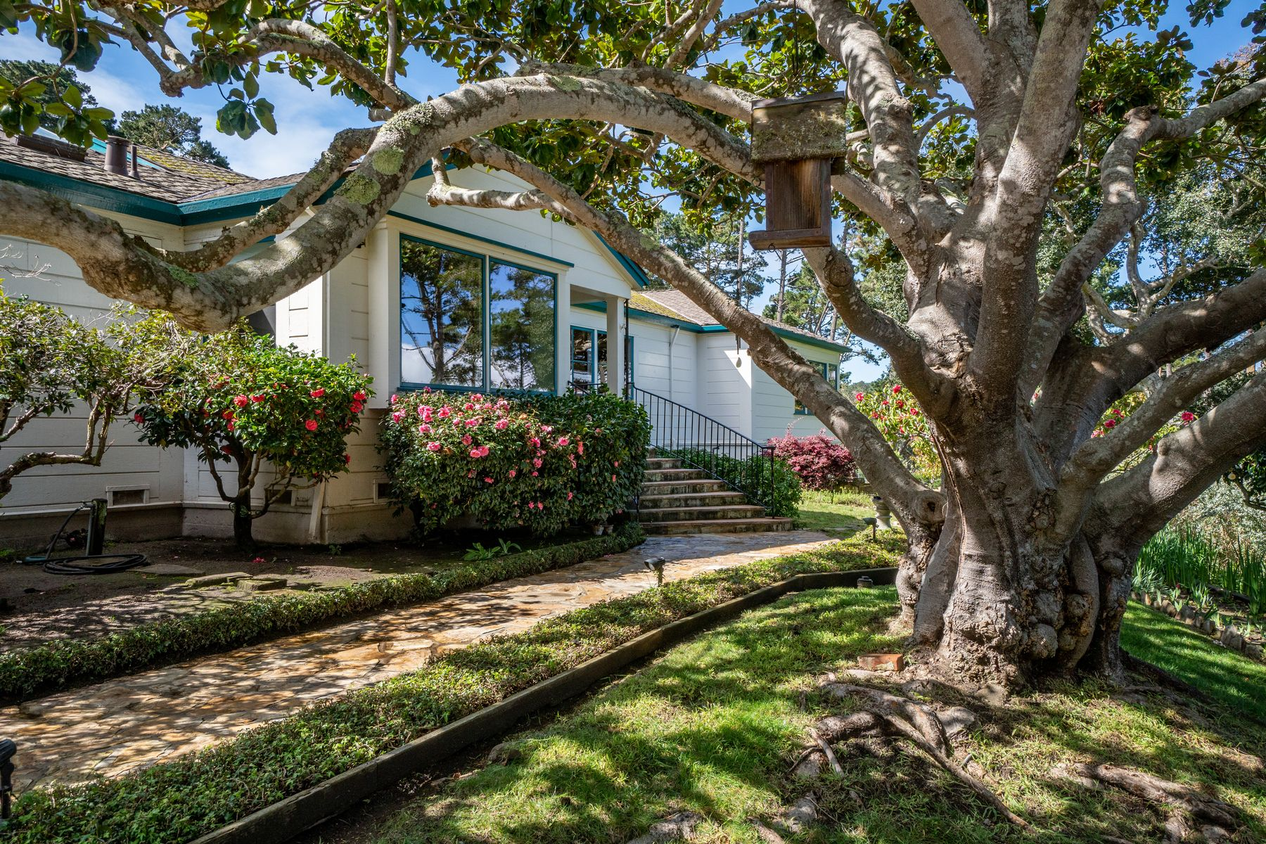 single family homes for Active at 587 Viejo Road Carmel, California 93923 United States