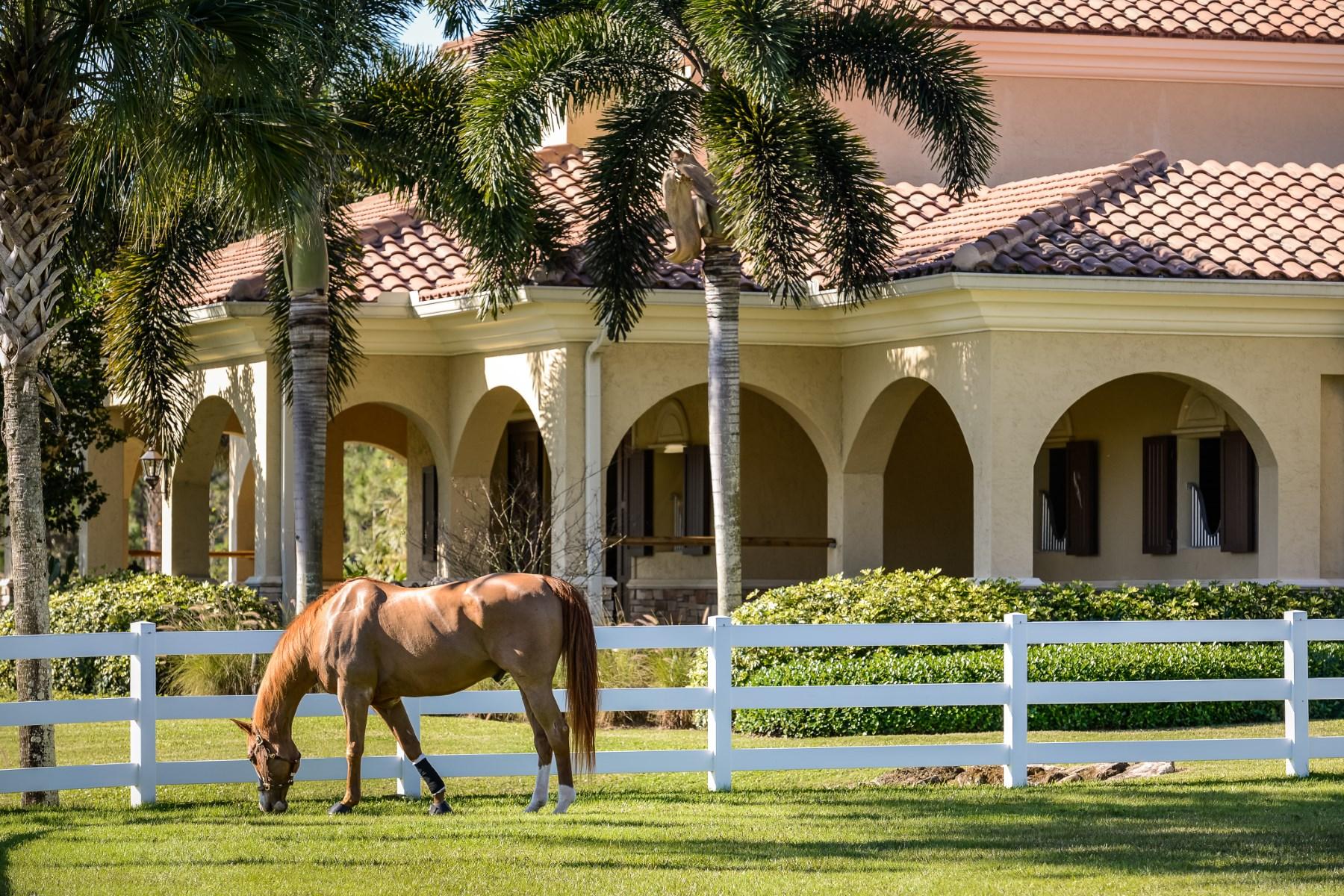 Additional photo for property listing at Jupiter Equestrian Estate  Jupiter, Florida 33478 United States