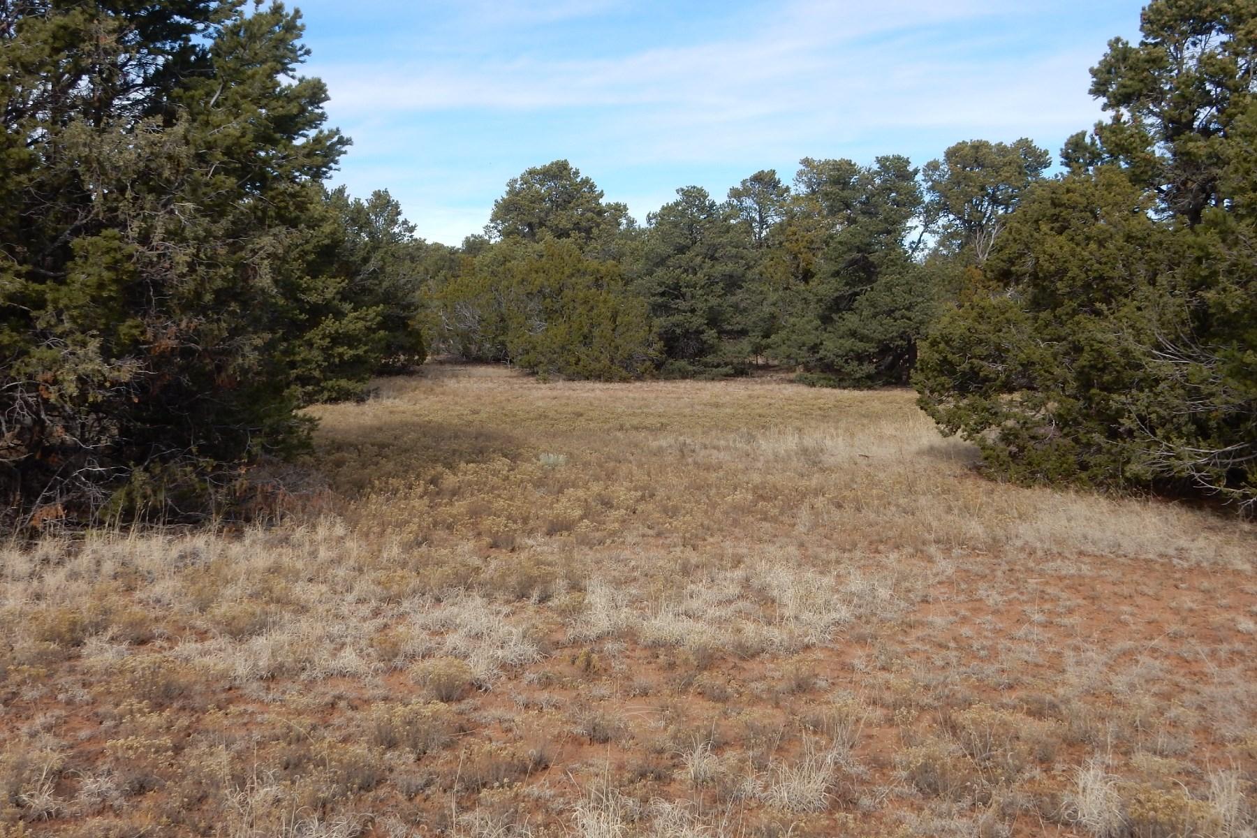 Land for Sale at Apache Ridge Road Apache Ridge Road Santa Fe, New Mexico 87508 United States
