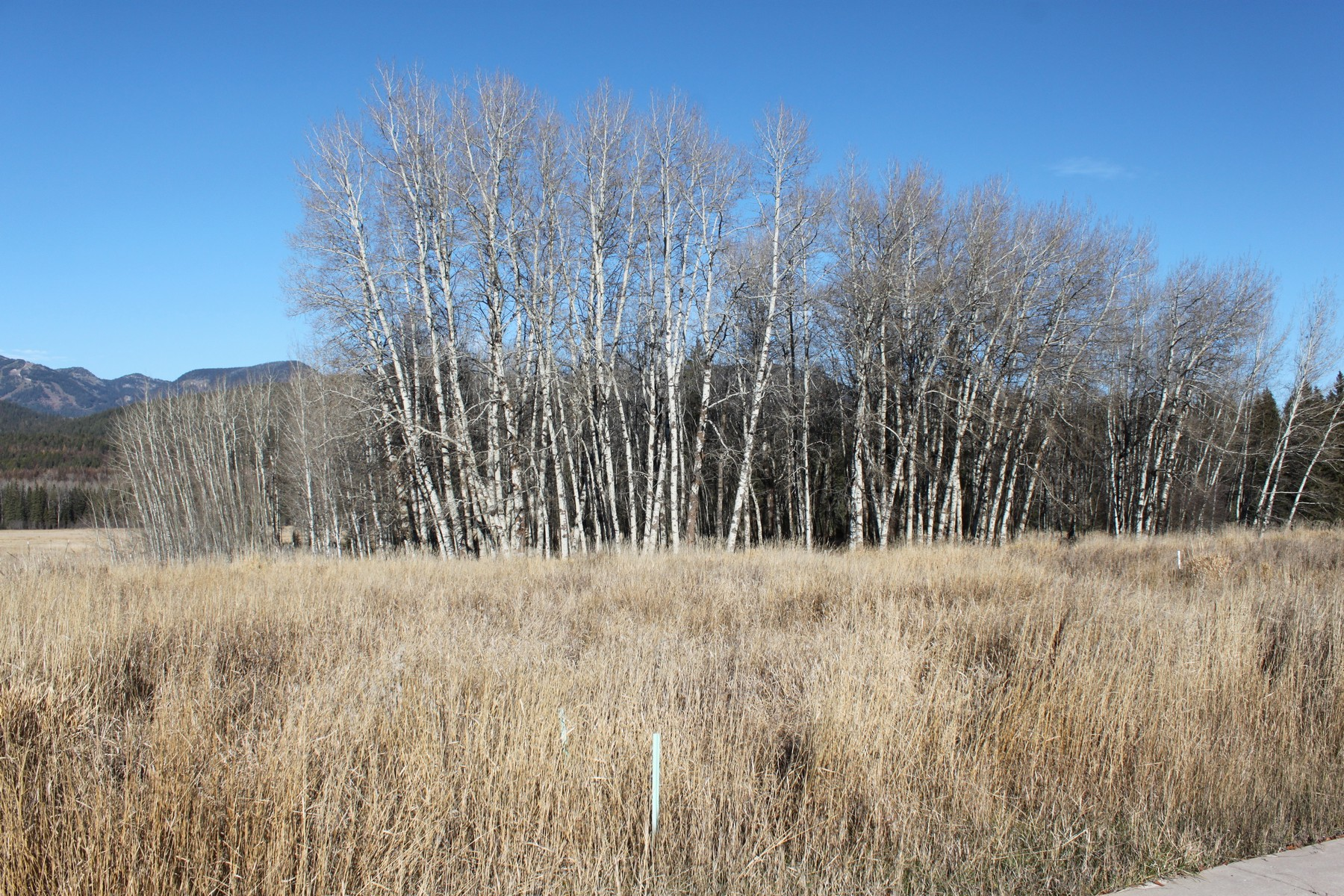 Land for Sale at Hidden Meadows Preserve 917 Preserve Pkwy Whitefish, Montana, 59937 United States