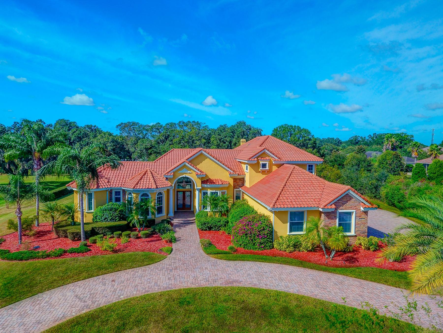 Nhà ở một gia đình vì Bán tại LUTZ 19624 Amazon Basin Lutz, Florida, 33559 Hoa Kỳ