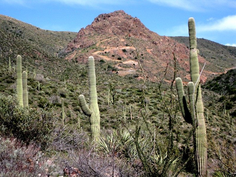 Land for Sale at Extraordinary 117 Acre Scottsdale Land Parcel 000 N Old Mine Rd Scottsdale, Arizona 85262 United States