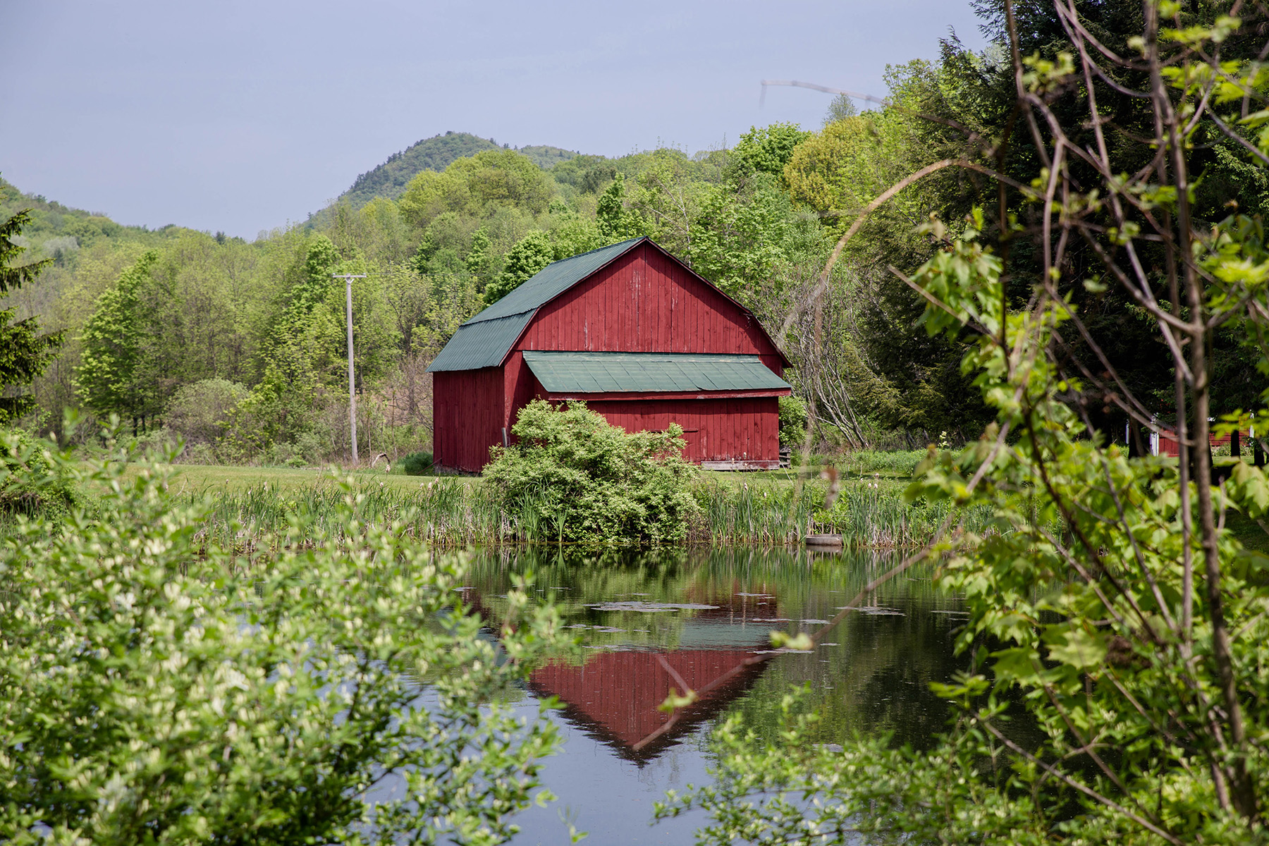 Additional photo for property listing at Butternut Farm 359a  Mckie Hollow Rd Cambridge, New York 12816 États-Unis