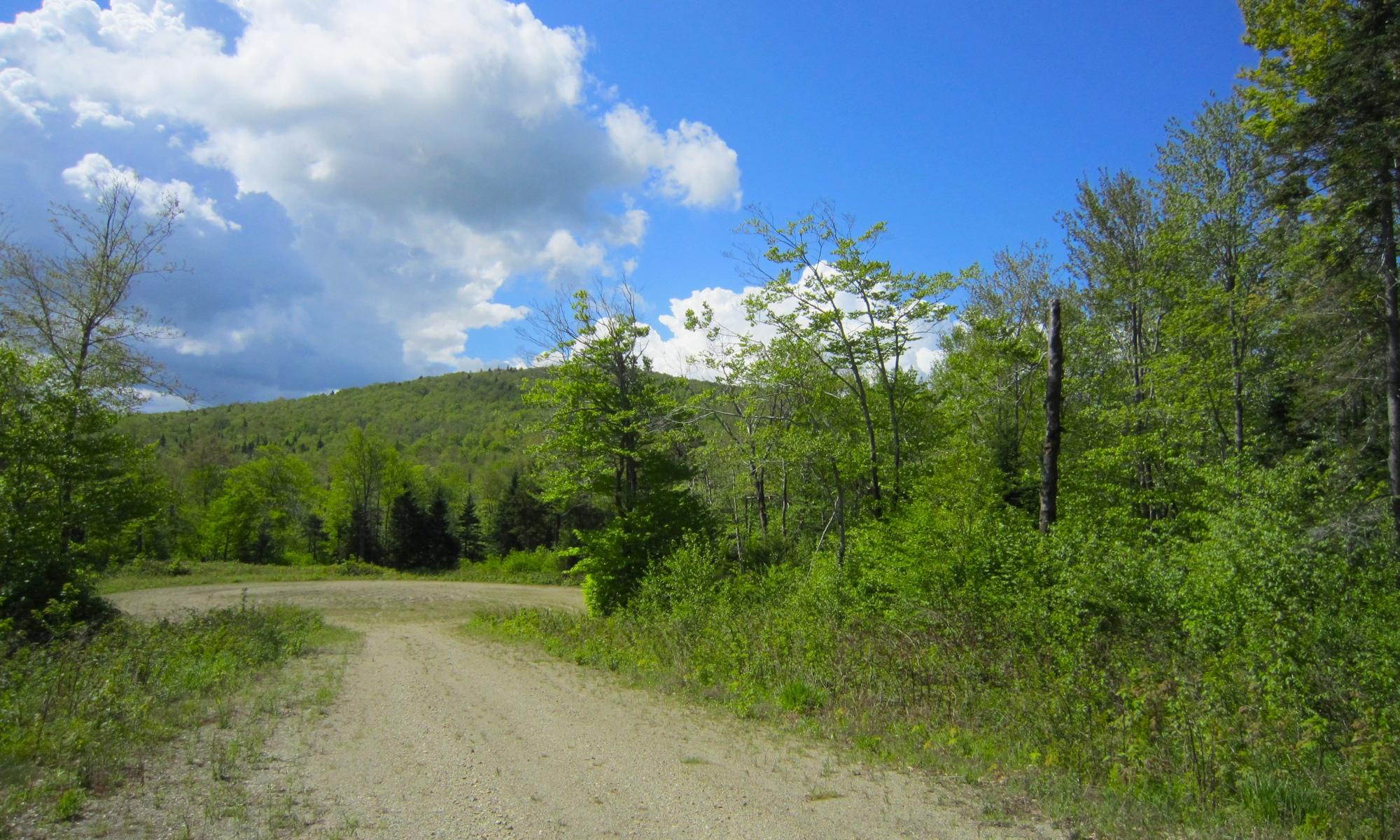 Land for Sale at South Ridge Estates Candeleros Court Lot 3 Ludlow, Vermont 05149 United States