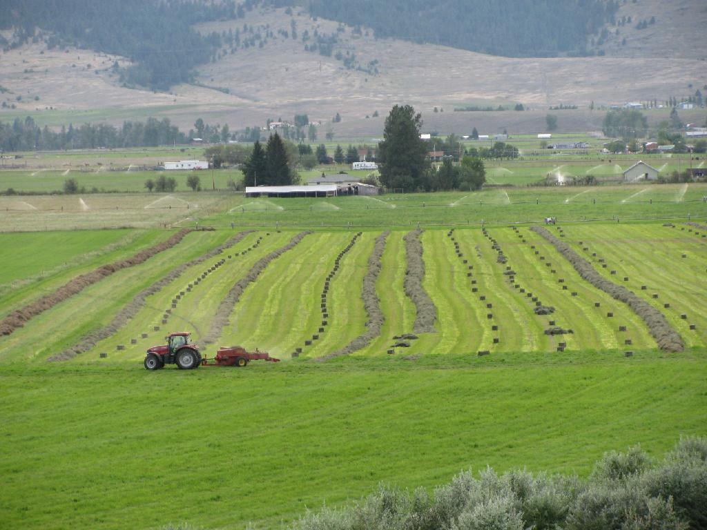 Arazi için Satış at Rehbein Ranch 32526 Mcleod Road Arlee, Montana, 59821 Amerika Birleşik Devletleri
