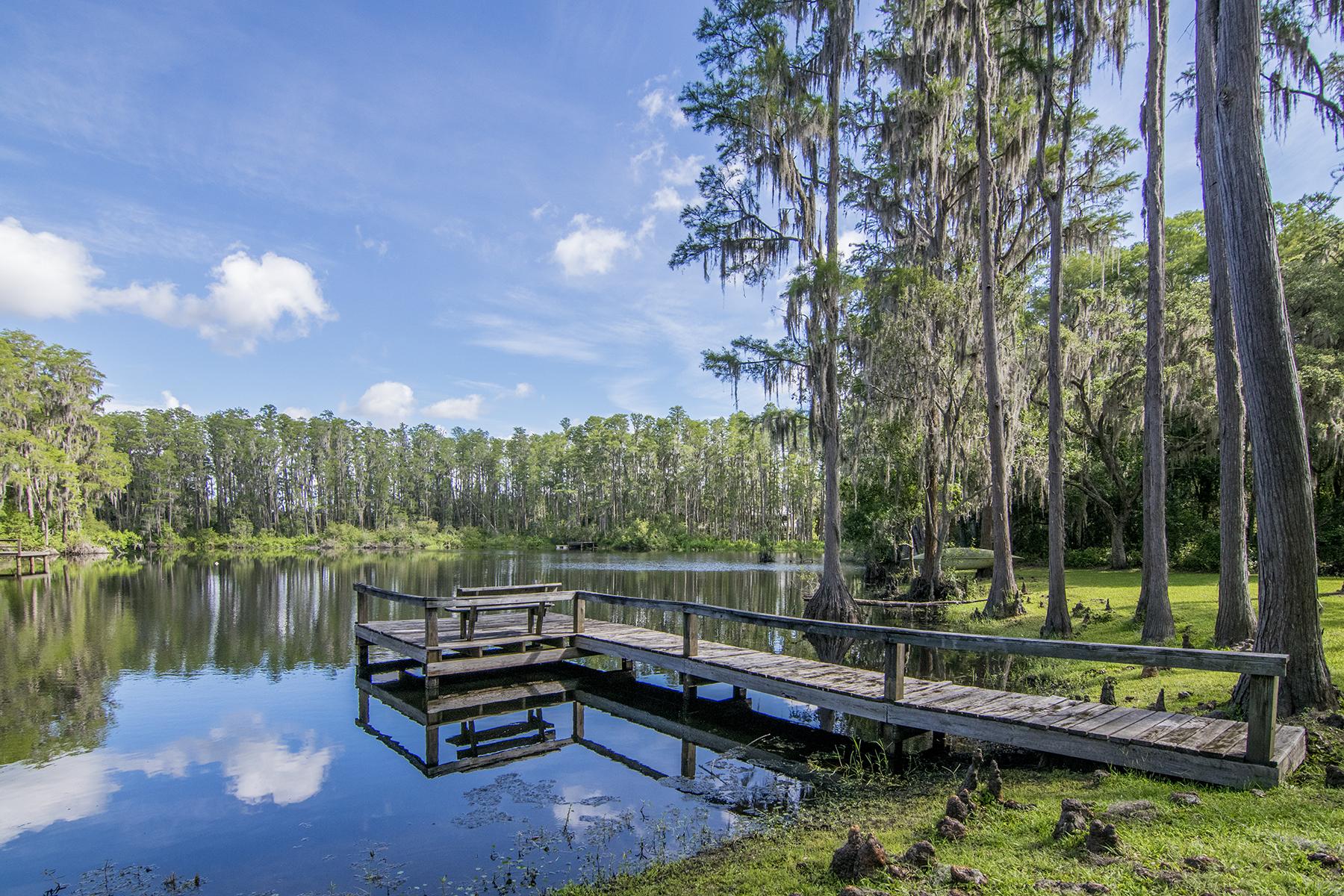Maison unifamiliale pour l Vente à ODESSA 16713 Hutchison Rd Odessa, Florida, 33556 États-Unis