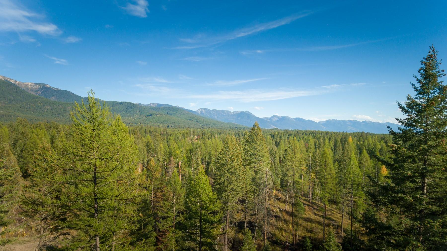 Terrain pour l Vente à 395 Kauffman Ln , Kalispell, MT 59901 395 Kauffman Ln Kalispell, Montana, 59901 États-Unis