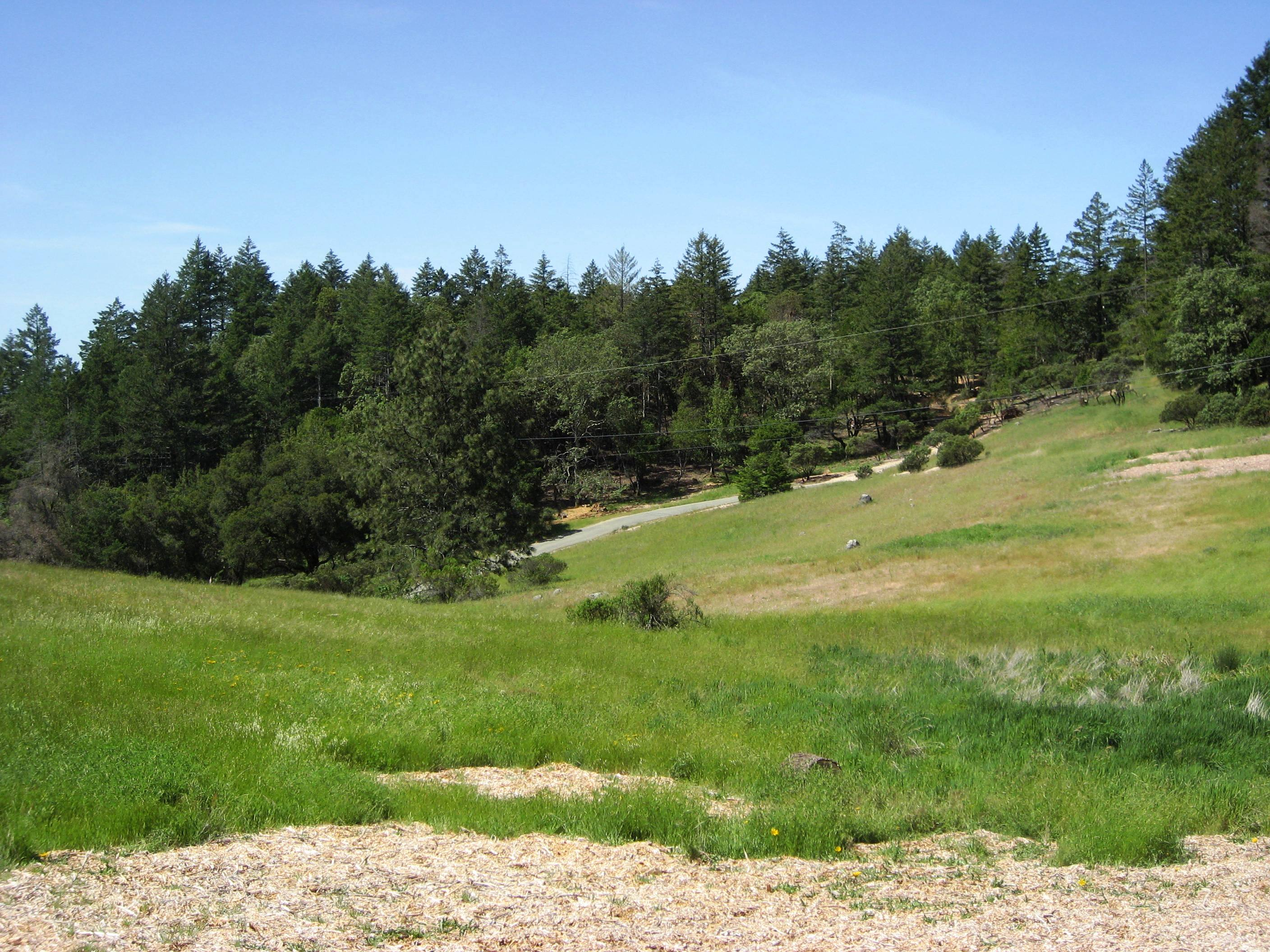 Land for Sale at 0 Cavedale Rd, Oakville, CA 94562 0 Cavedale Rd Oakville, California 94562 United States