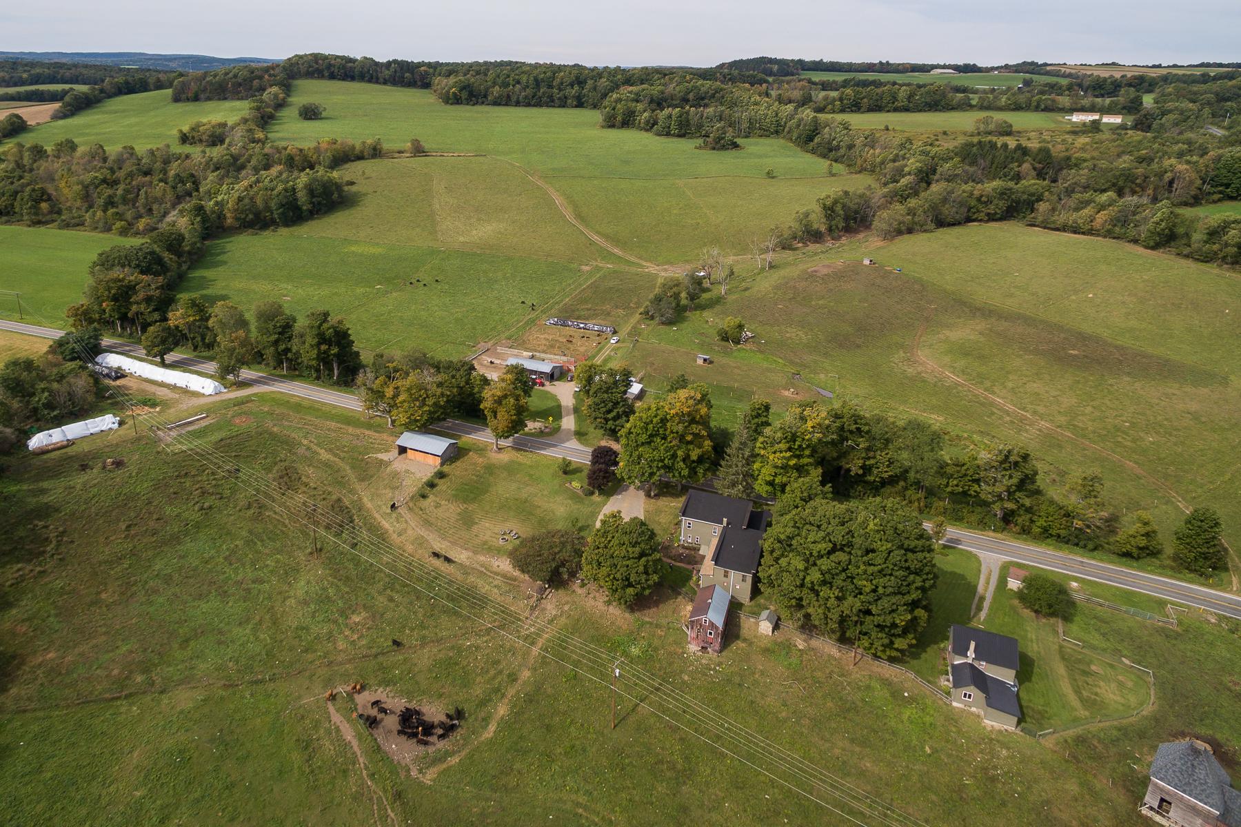 Granjas / Hacienda / Platanción por un Venta en Drover Hill Farm 1014 Earlville Rd Hamilton, Nueva York 13332 Estados Unidos