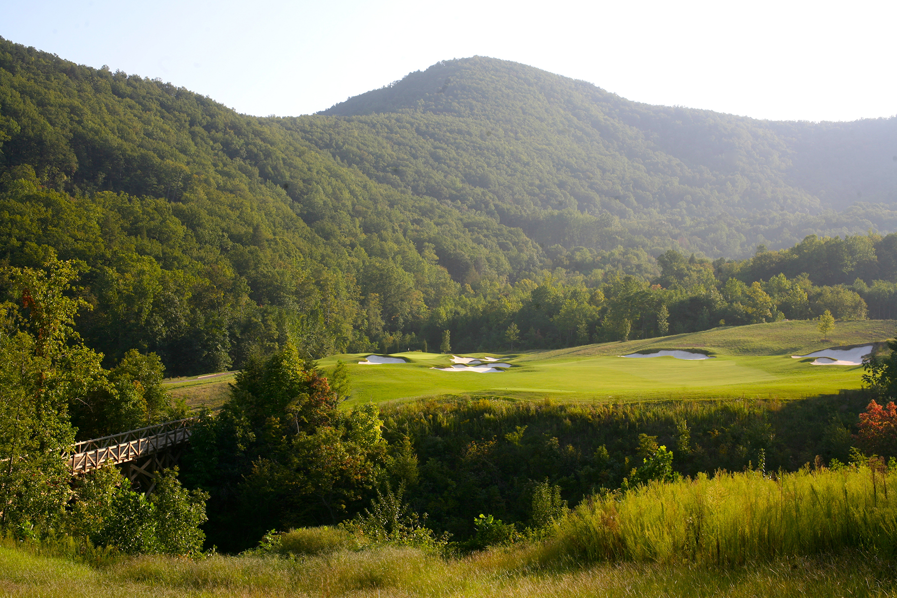 Land for Sale at MILL SPRING - BRIGHT'S CREEK 202 Cherry 202 Mill Spring, North Carolina, 28756 United States