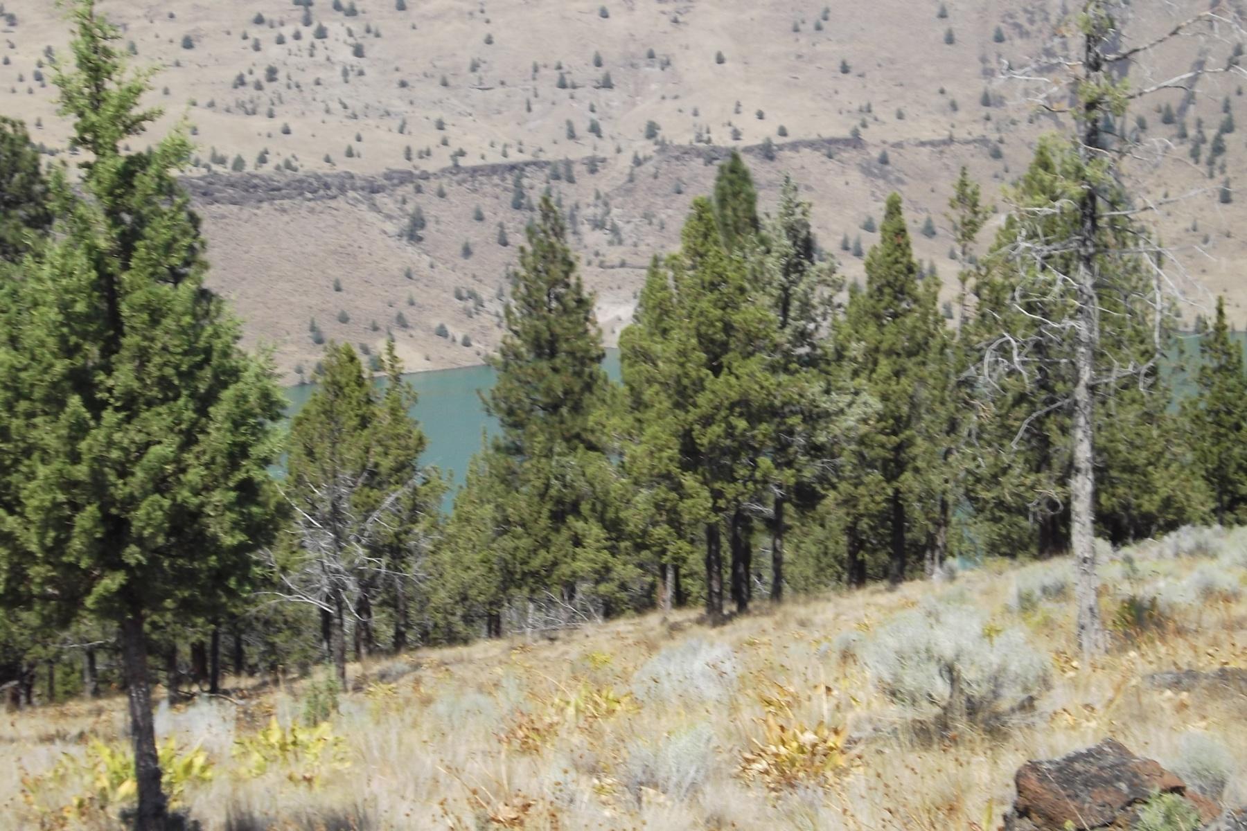 Land für Verkauf beim Lake Views & Ready for Camping 12190 SW This Way Ln Culver, Oregon, 97734 Vereinigte Staaten
