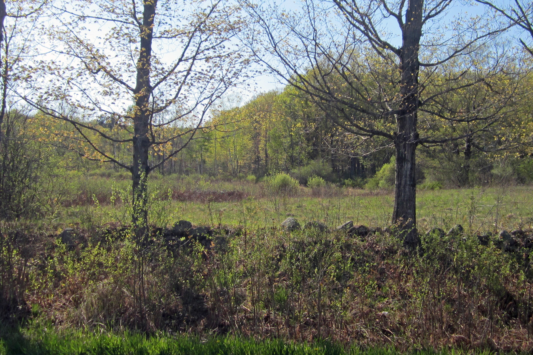 Land for Sale at Country Living 1050 Eureka Rd Springfield, Vermont, 05156 United States