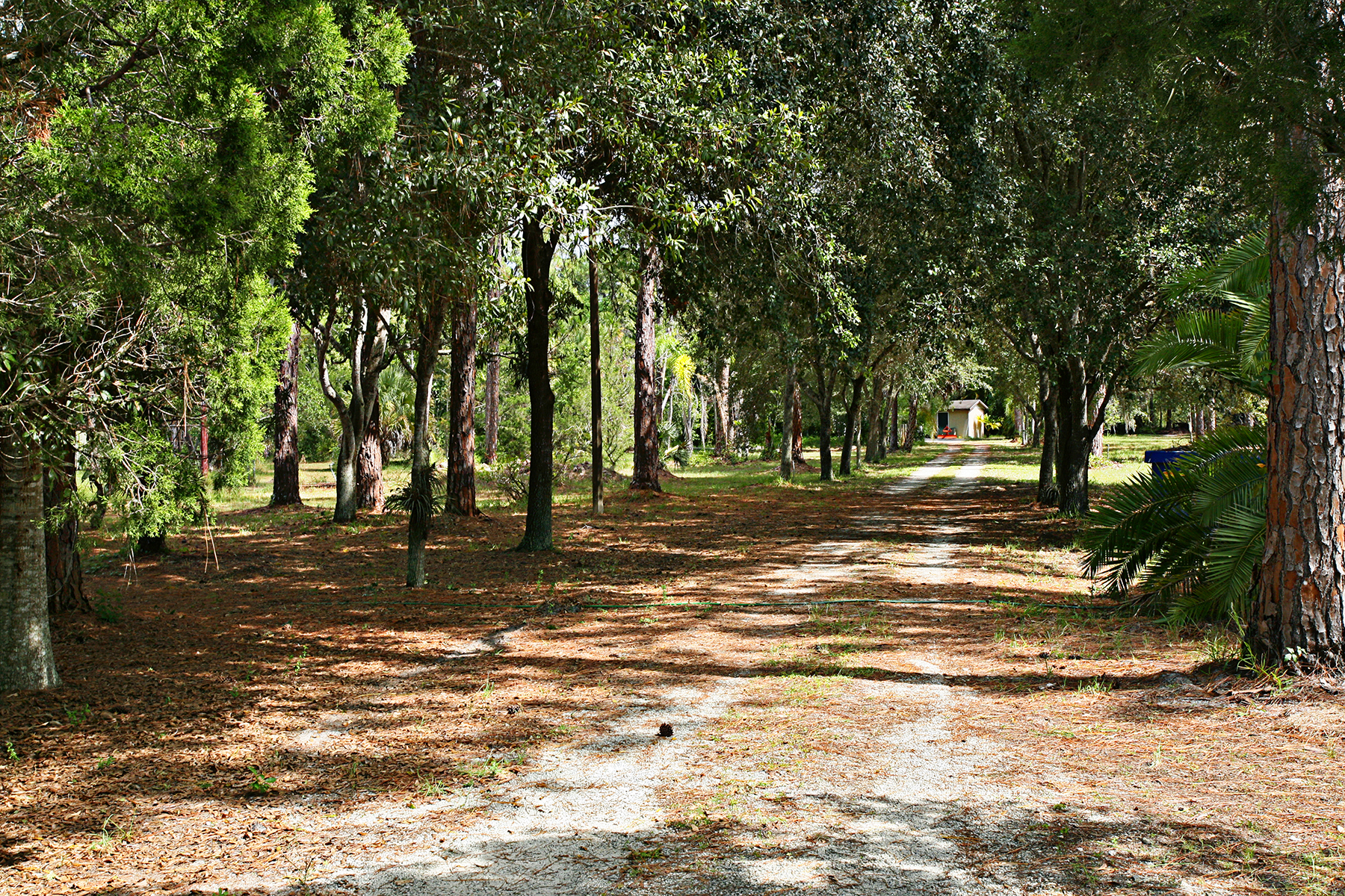Land for Sale at NAPLES - SAN MARCOS BLVD 1275 San Marcos Blvd Naples, Florida 34104 United States