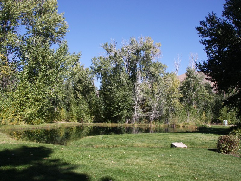 Additional photo for property listing at 21 Acres on the Big Wood River 100 Trout Lane 贝尔维尤, 爱达荷州 83313 美国
