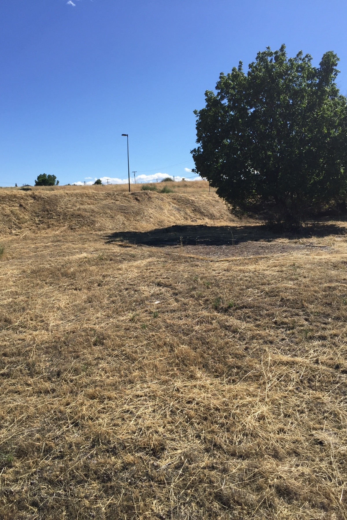 Land for Sale at Buildable Corner Double Lot 436 SW H St Madras, Oregon, 97741 United States