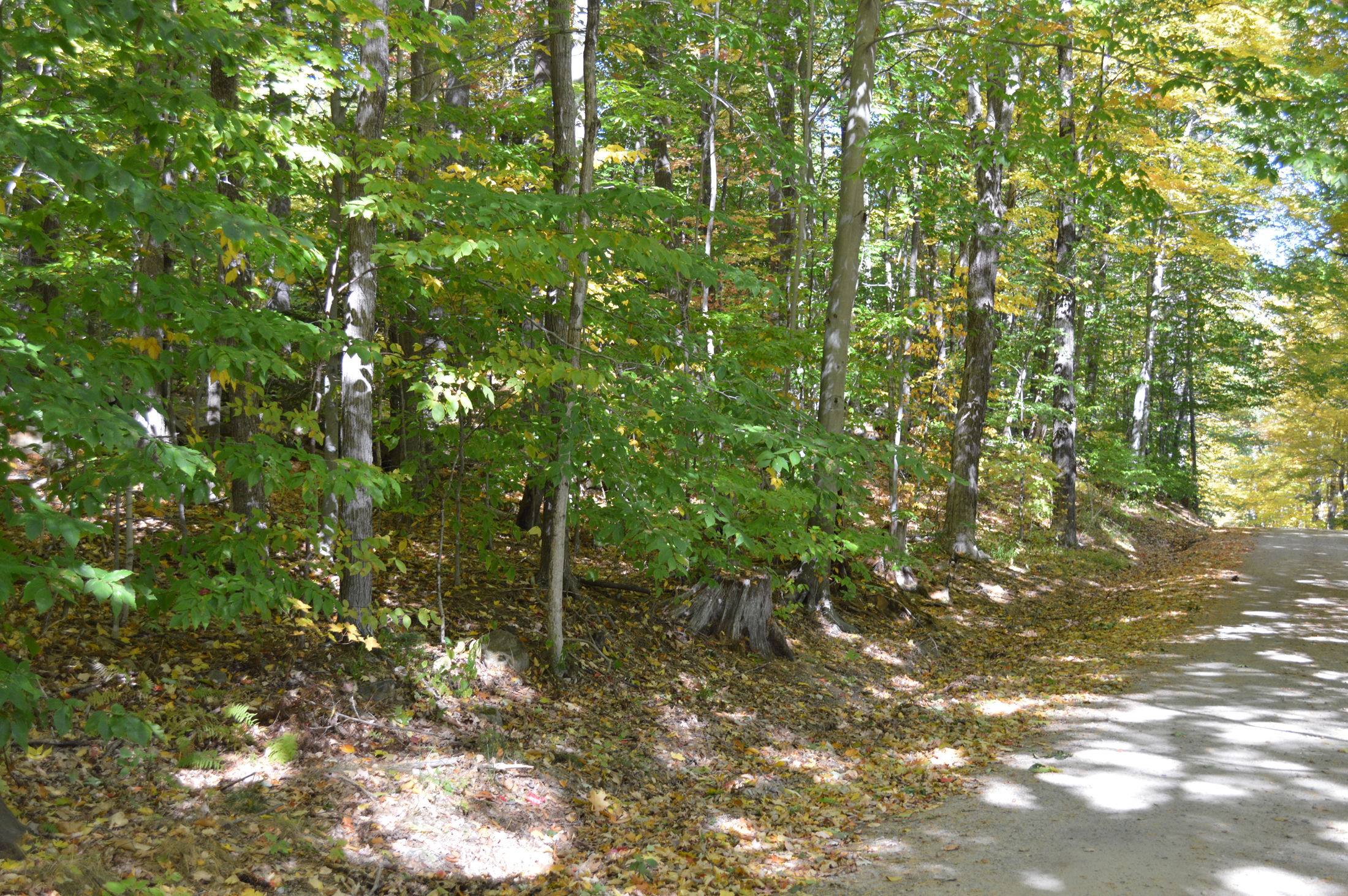 Land for Sale at Lot 0 True Farm Road, Holderness Lot 0 True Farm Rd Holderness, New Hampshire, 03245 United States