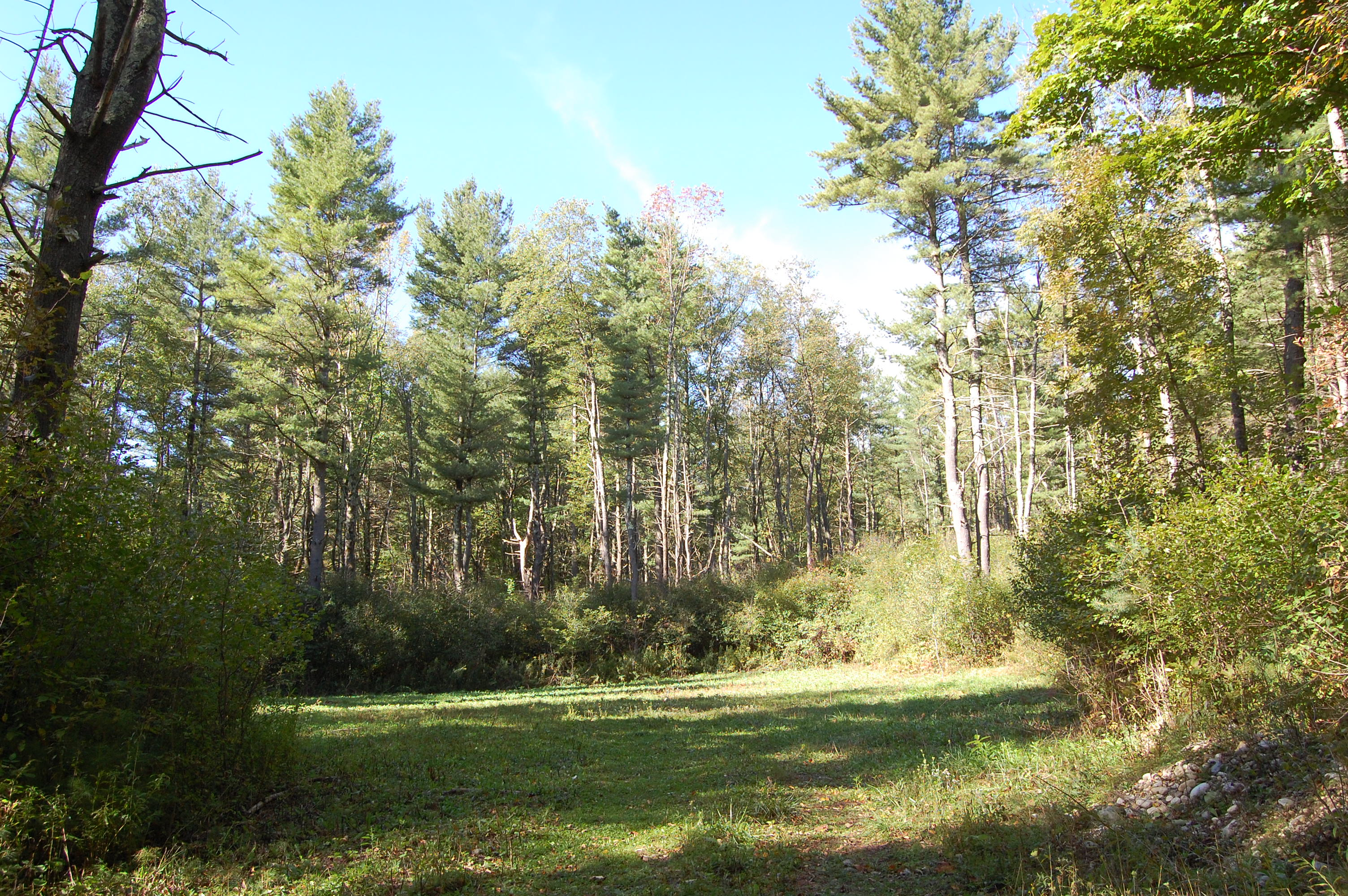 Land for Sale at Thirty Eight Acres in Manchester Village Prospect Manchester, Vermont, 05254 United States