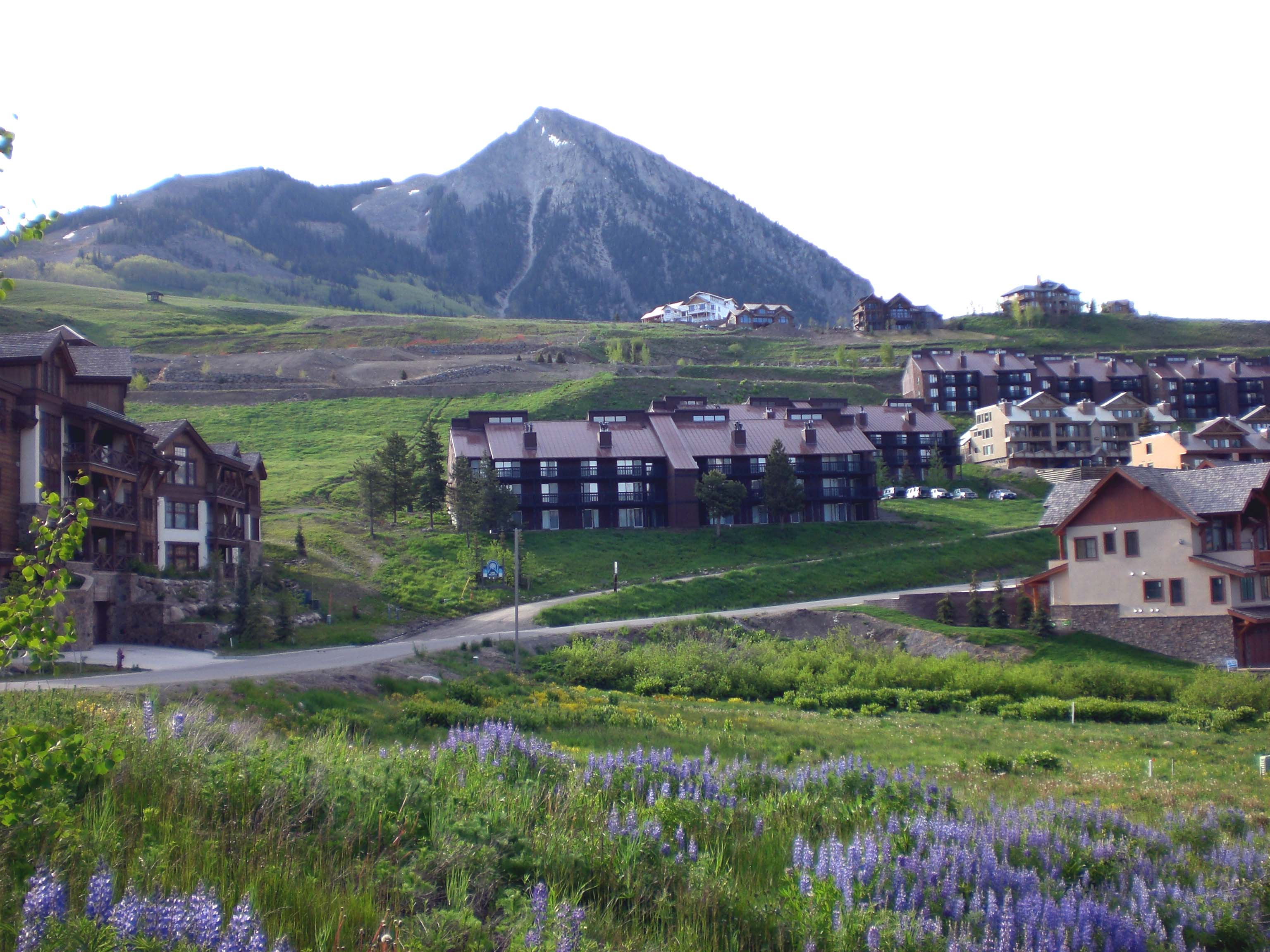 Terrain pour l Vente à Bear Crossing Multi-Family Development Lot 14 Castle Road Mount Crested Butte, Colorado, 81225 États-Unis