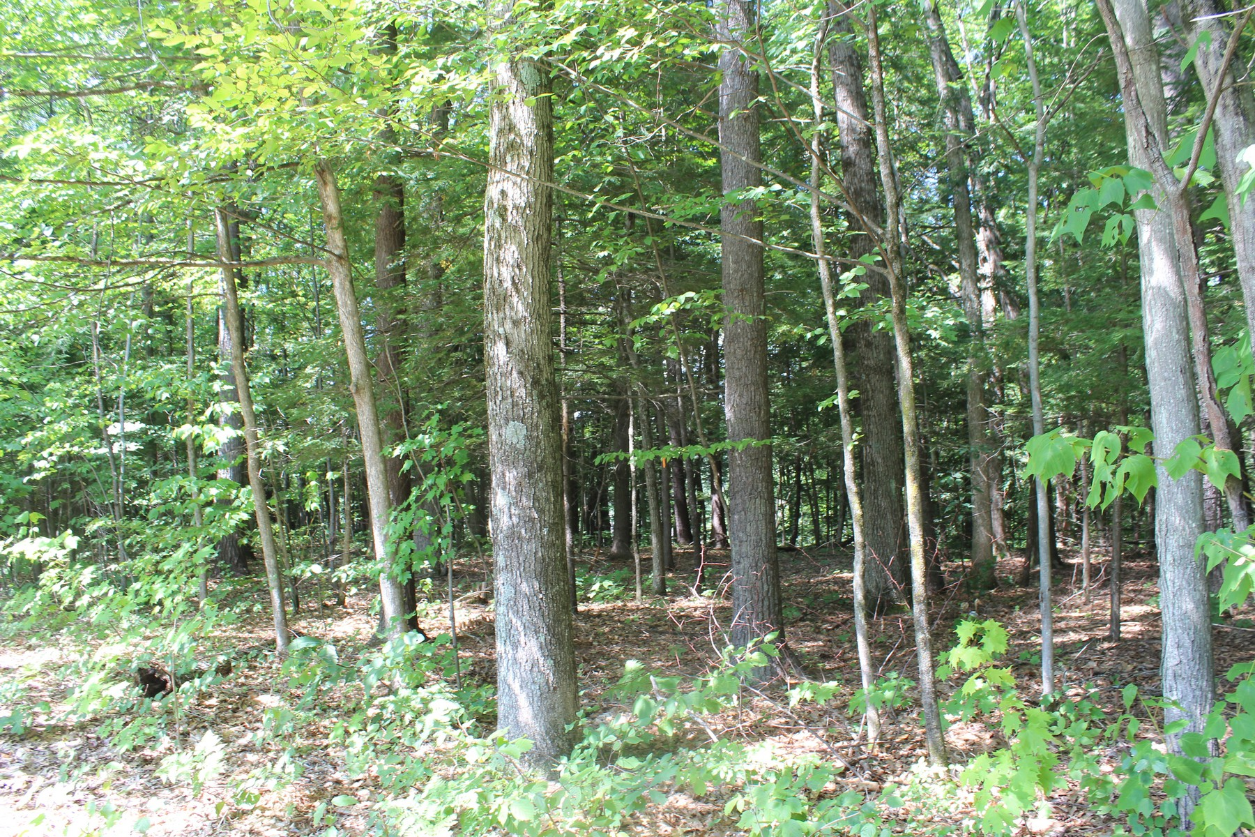 Additional photo for property listing at Smith Farm 50  Old Bend Rd Fort Edward, New York 12828 United States