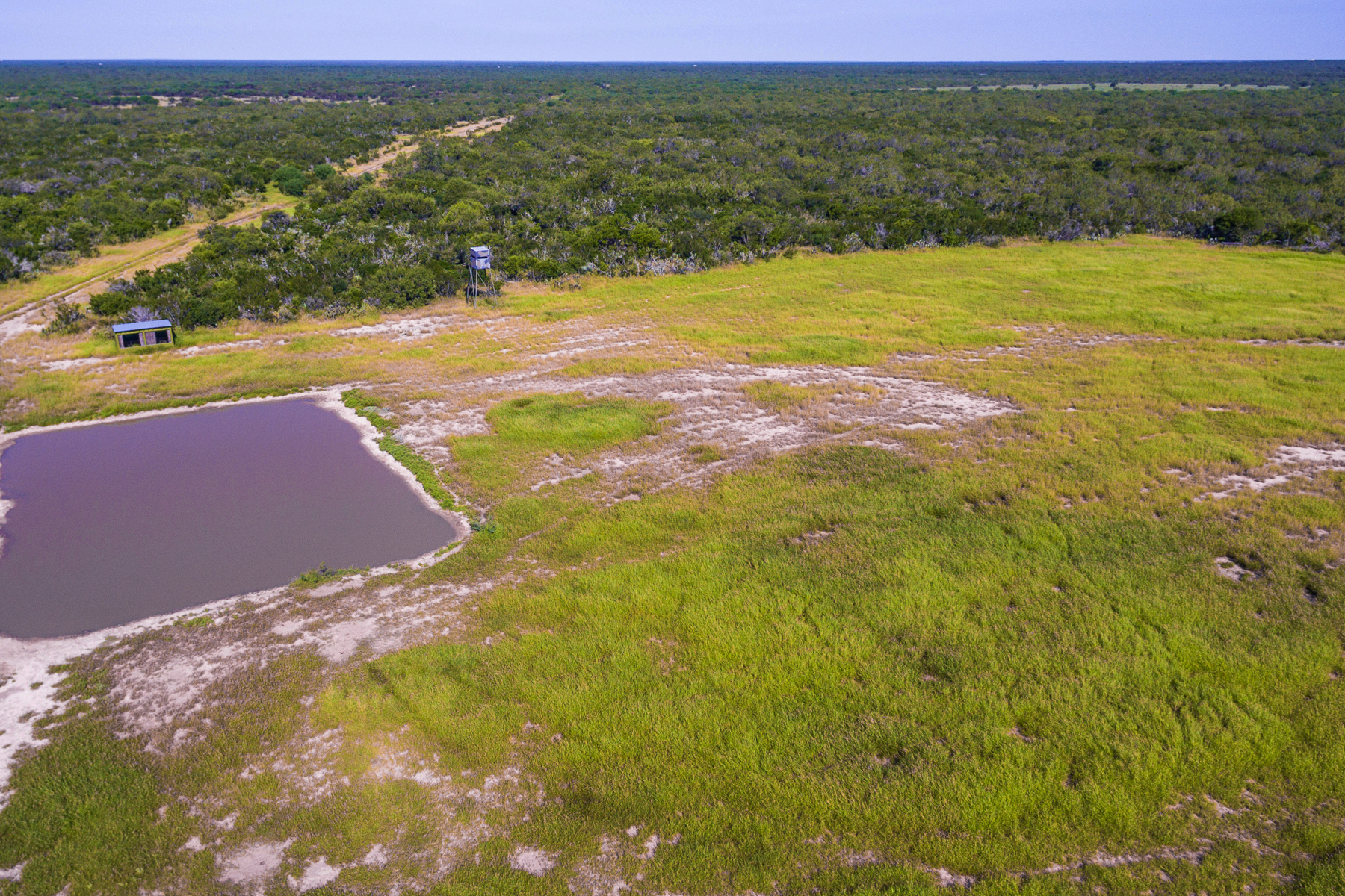 Additional photo for property listing at 2,703± Acres Santa Margarita Ranch 2703 Acres / La Salle County Cotulla, Texas 78014 Estados Unidos