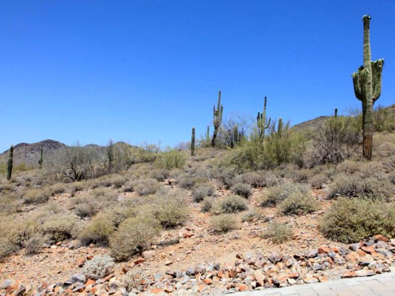 Земля для того Продажа на 1.59 Acre Custom View Lot in Estancia 9801 E Dynamite Blvd #263 Scottsdale, Аризона 85262 Соединенные Штаты
