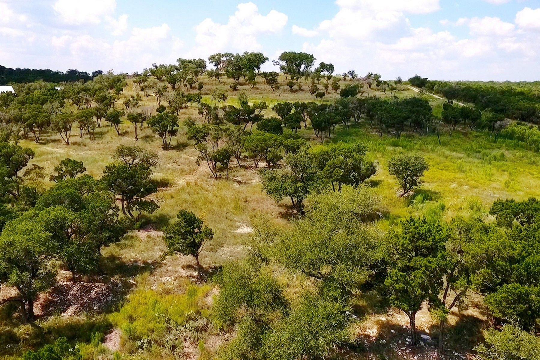 Land for Sale at Unique Land Value Minutes to Austin Lot 10 Old Baldy Trl Dripping Springs, Texas 78620 United States