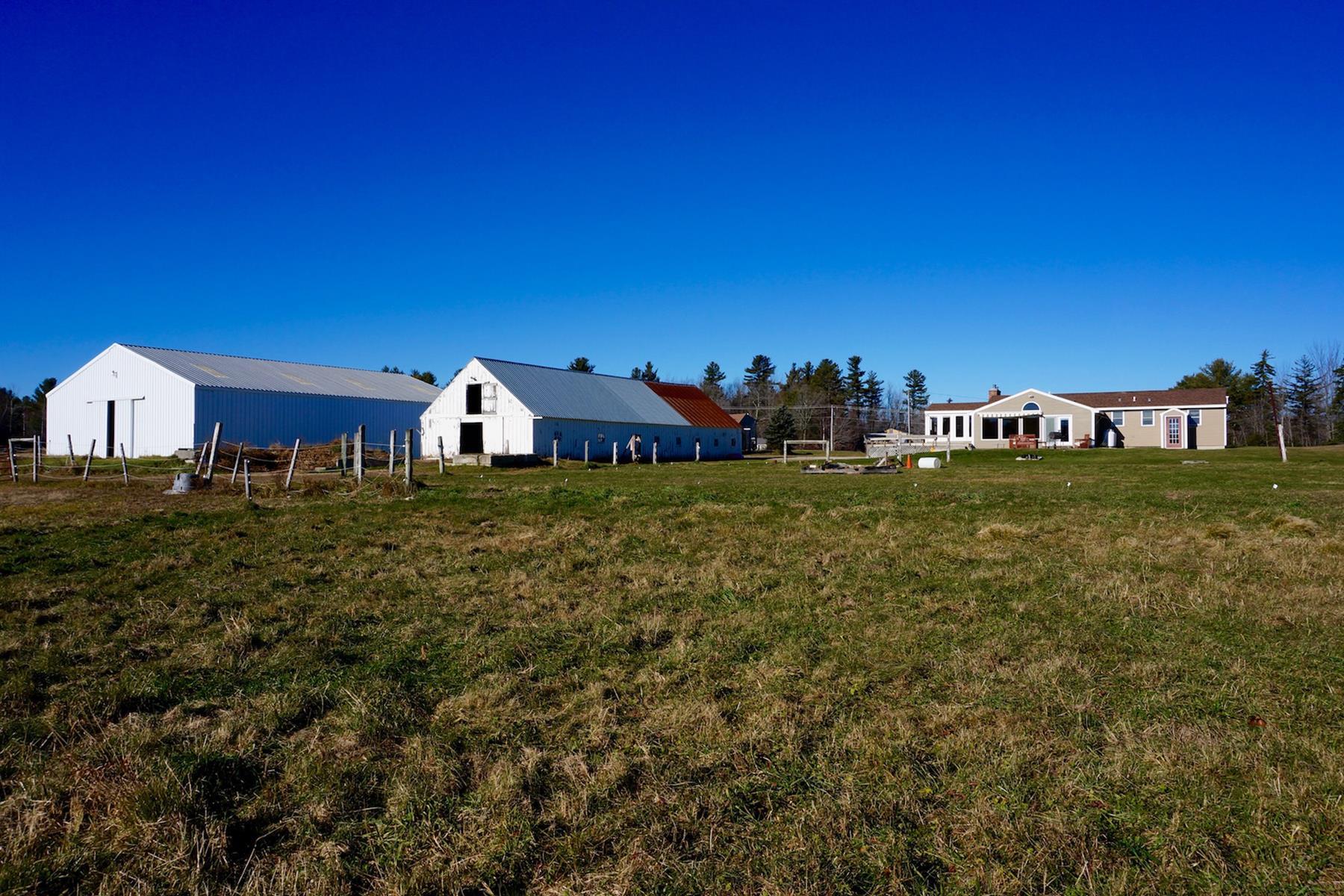 Villa per Vendita alle ore 1429 King Hill Rd, New London New London, New Hampshire 03257 Stati Uniti