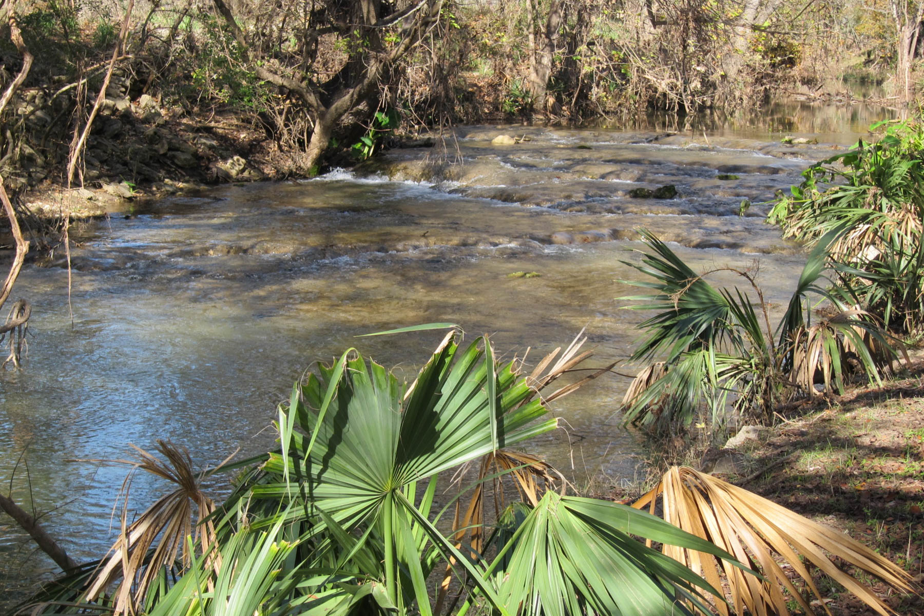 Land for Sale at Spring-Fed Creek Waterfront Lot 213 Rittiman Rd Spring Branch, Texas 78070 United States