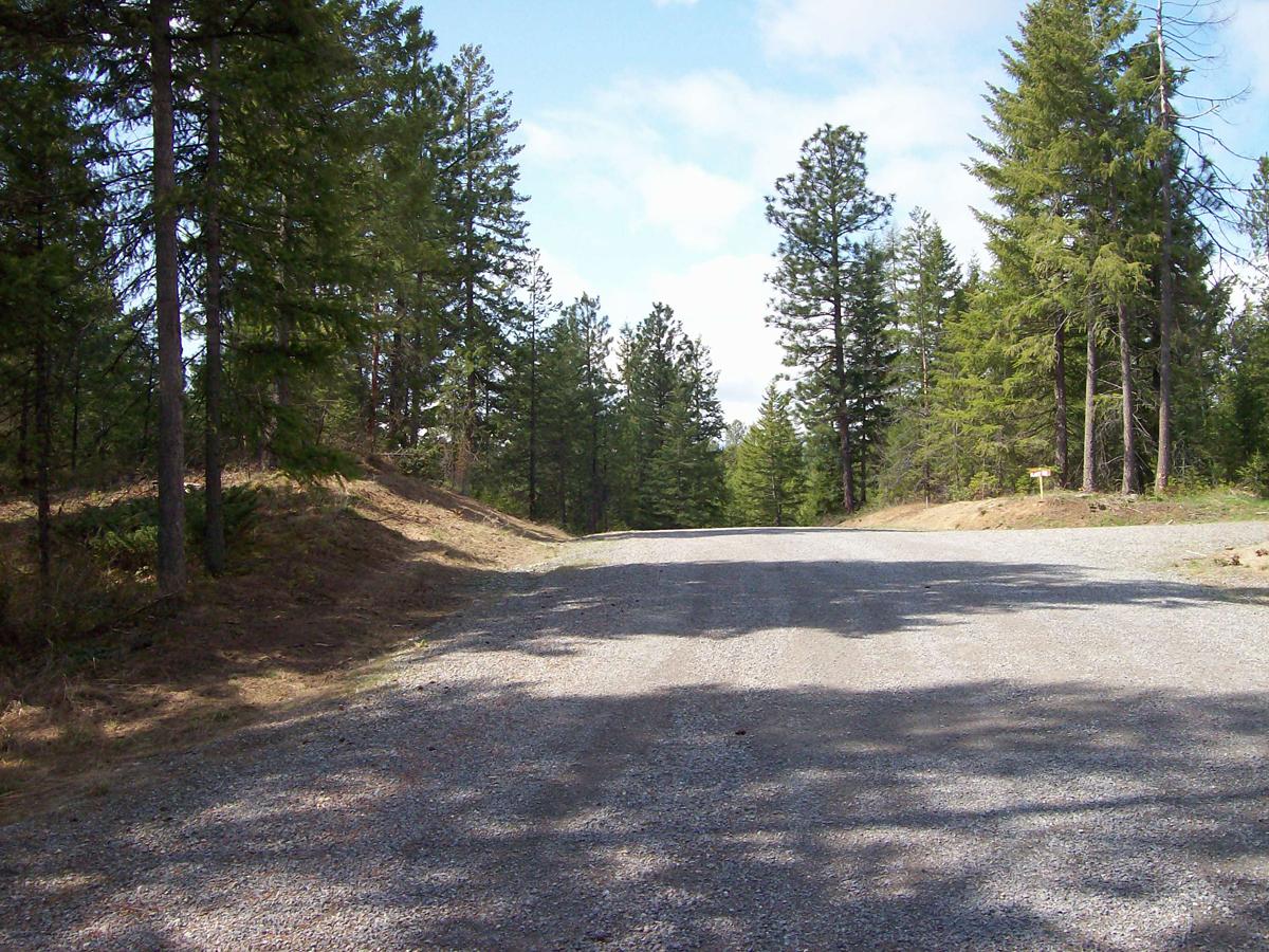 Terrain pour l Vente à Gorgeous lot, nicely treed 8 Heavenly Drive Bonners Ferry, Idaho 83805 États-Unis