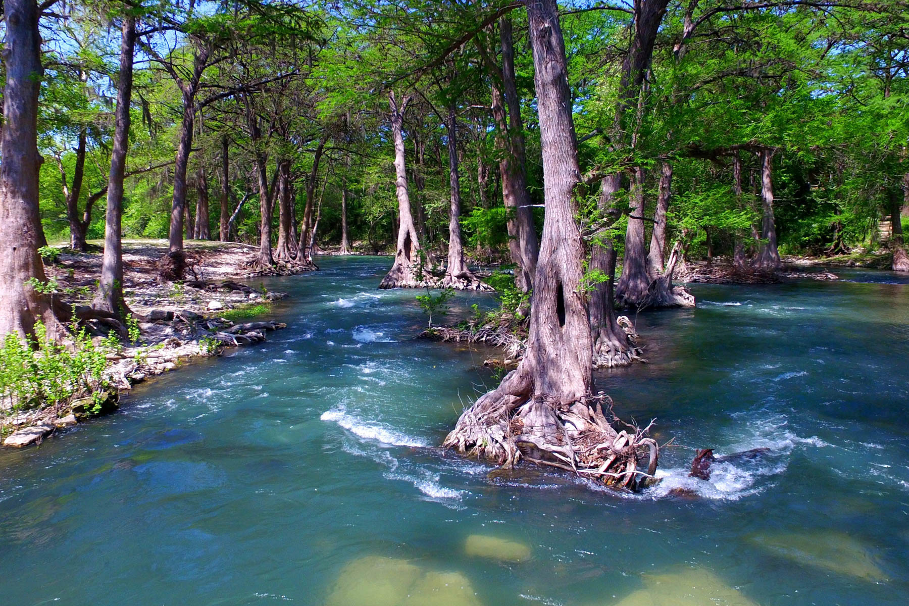 Additional photo for property listing at Gruene River Guest House on the Guadalupe River 1230 Sleepy Hollow New Braunfels, Texas 78130 Estados Unidos