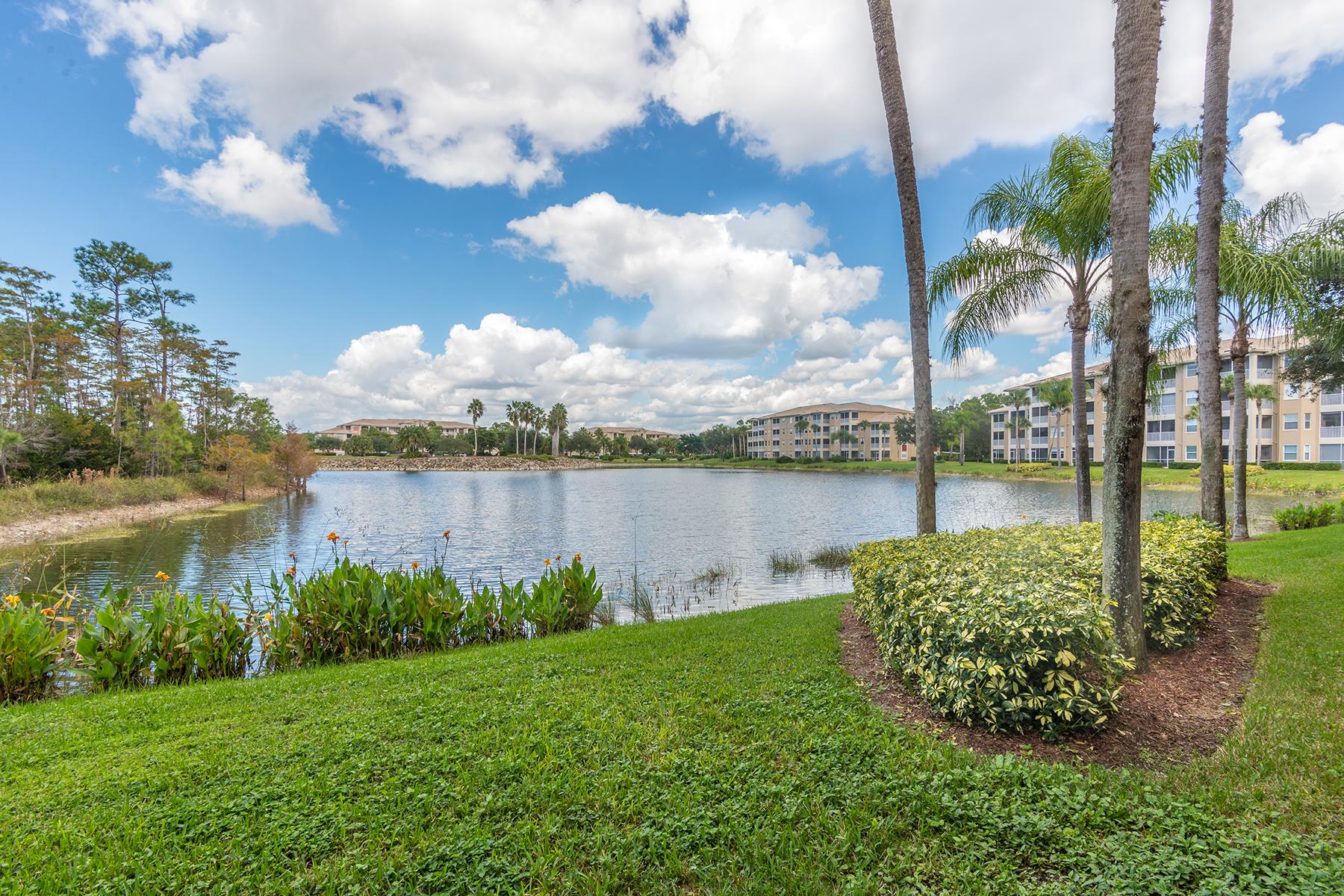 共管物業 為 出售 在 NAPLES HERITAGE - STONEYBROOK 7525 Stoneybrook Dr 912 Naples, 佛羅里達州, 34112 美國