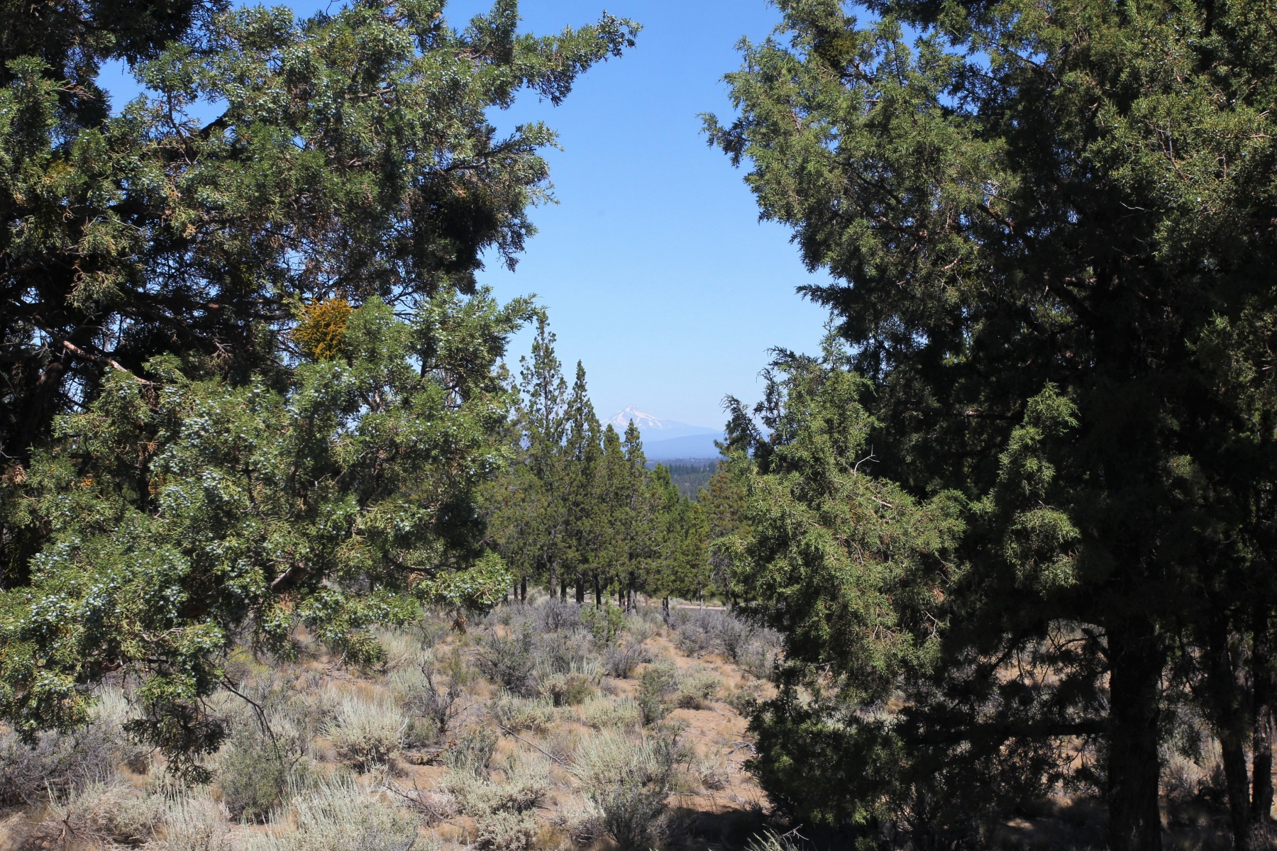 Land for Sale at 1489 NW Puccoon Court Lot 128, BEND 1489 NW Puccoon Ct Lot 128 Bend, Oregon, 97702 United States