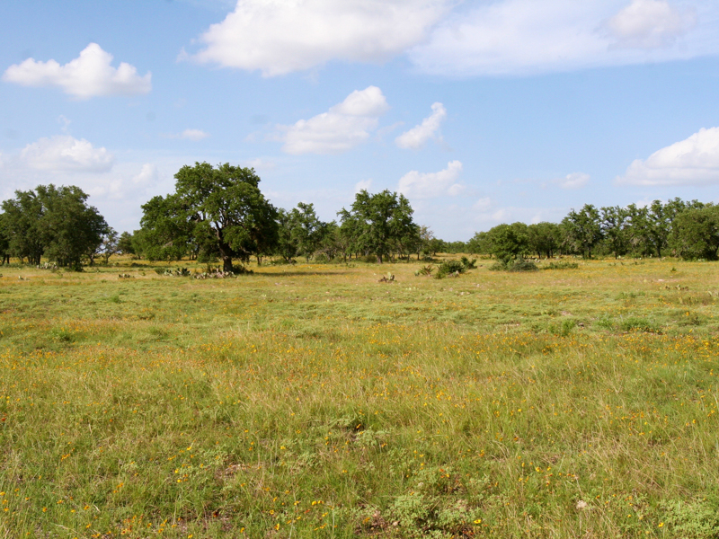 Farm / Ranch / Plantation for Sale at 199+ Acres Nolan Ranch 1165 Hwy 41 Mountain Home, Texas 78058 United States